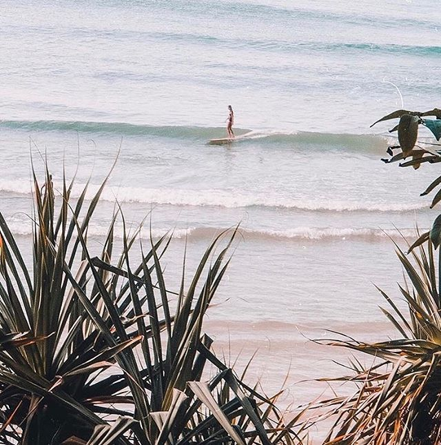 Long, lonely waves. This is bliss @salty_gypsy 💦