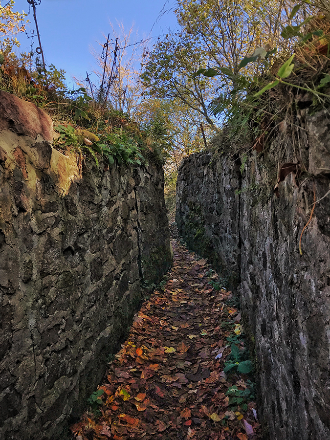Narrow Hartmannswillerkopf trenches