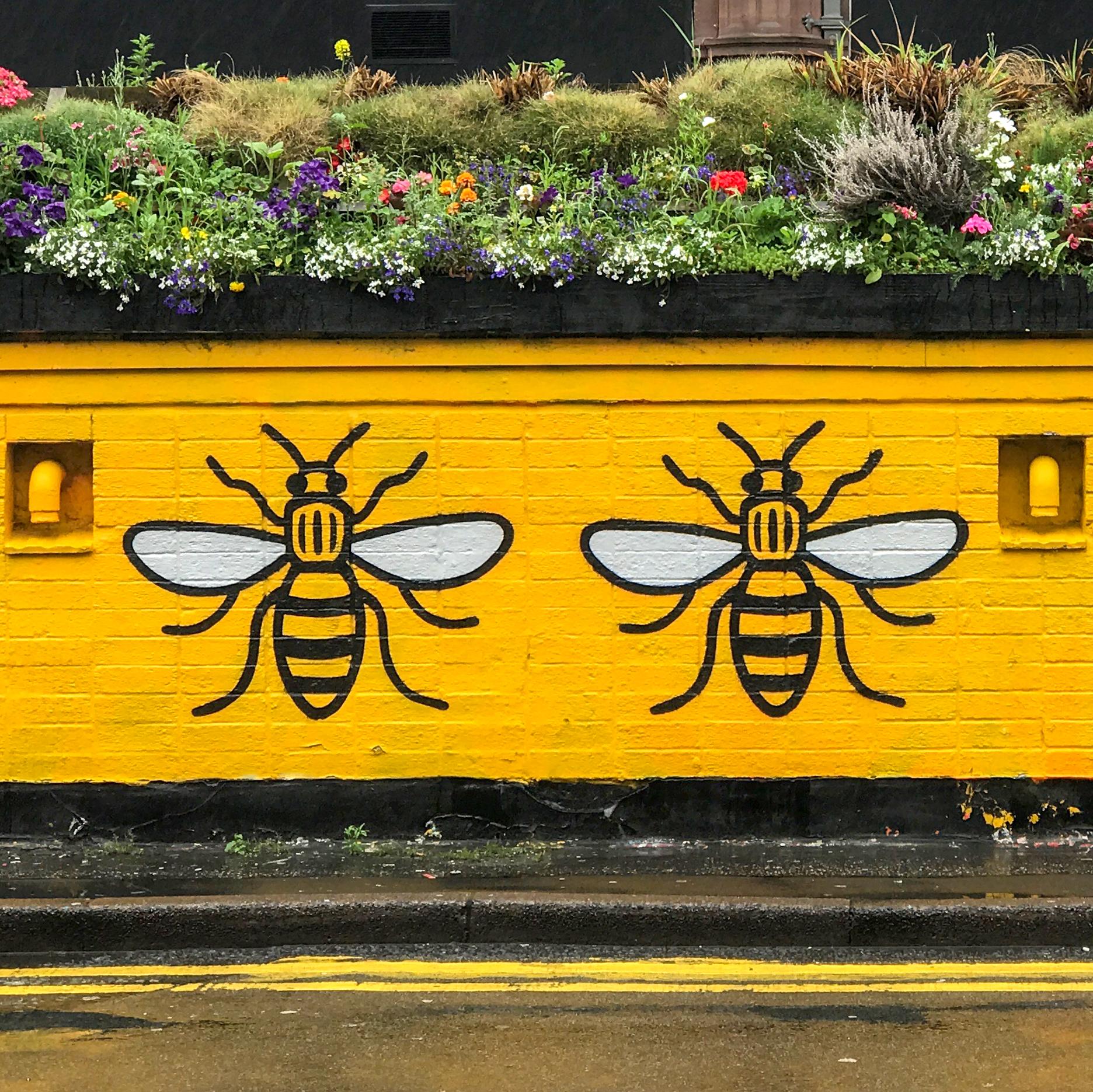 2017 Street Art