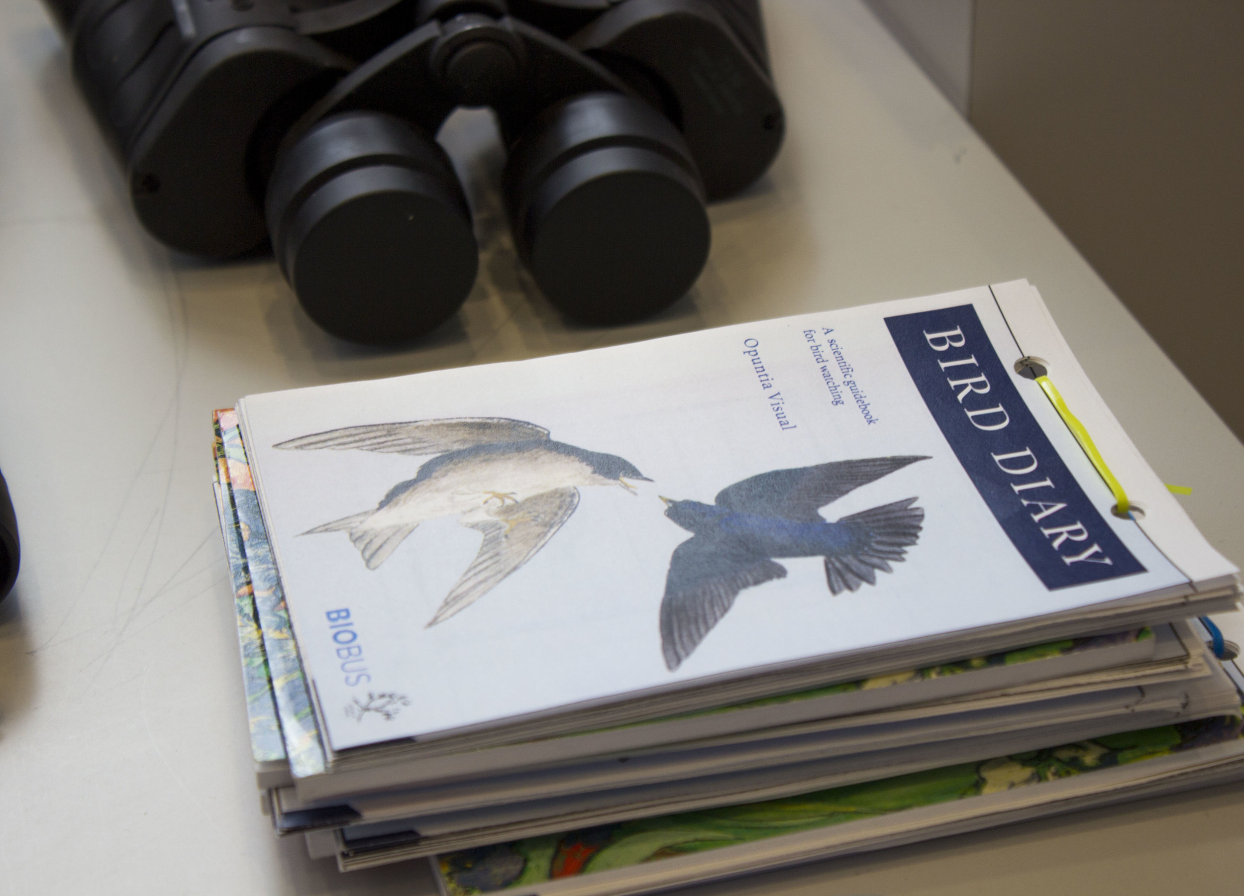 The guide to make your own bird diary here!