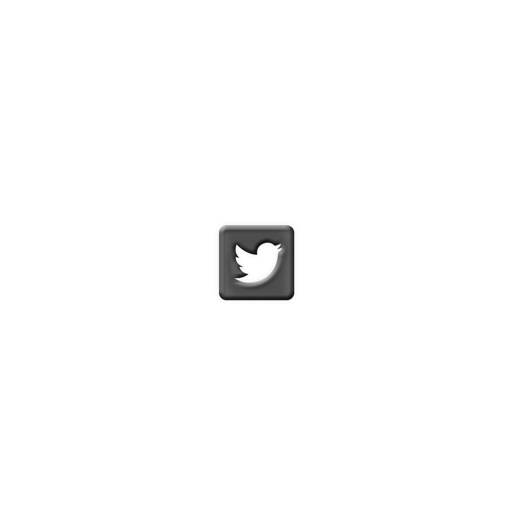 Twitter RiseRevolt.png