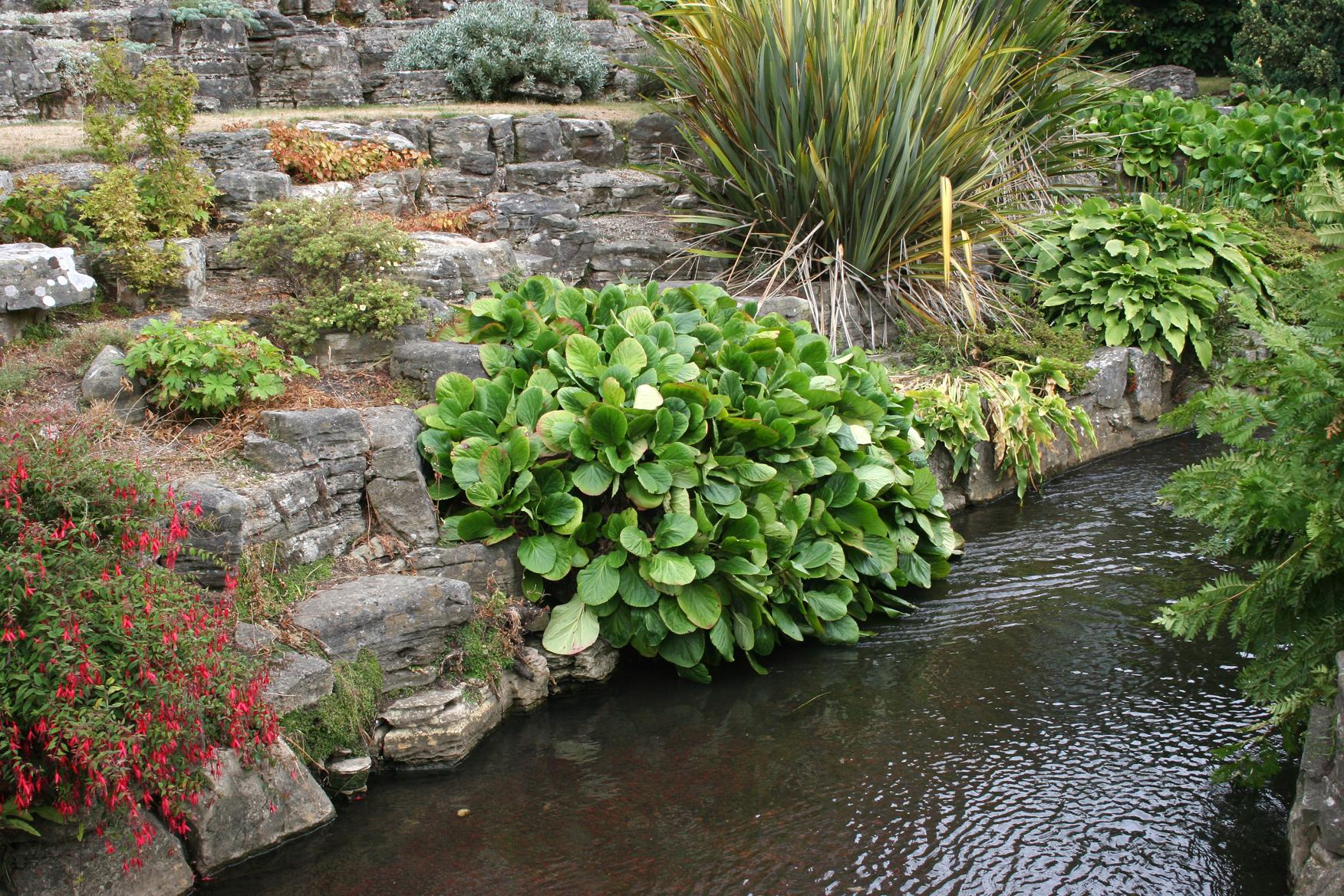 gardens-1390457.jpg