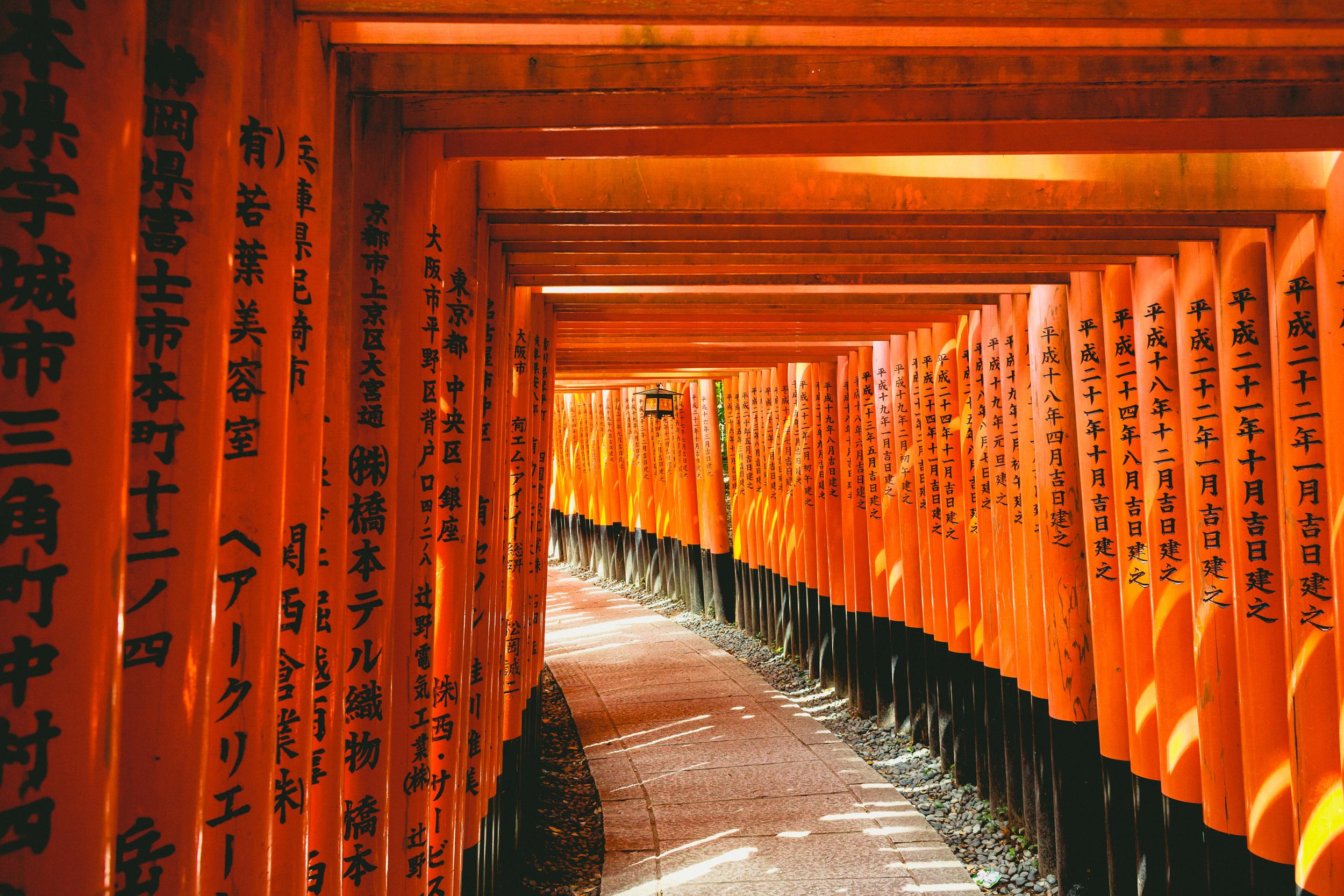 The seemingly endless tunnel of sacred orange Torii Gates at Fushimi Inari Shrine, Kyoto, Japan