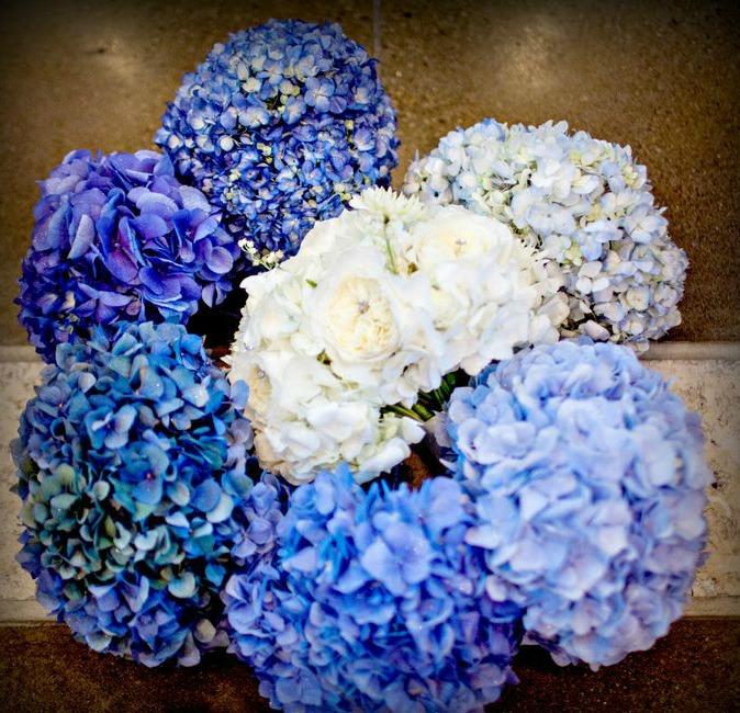 ombre-flowers.jpg