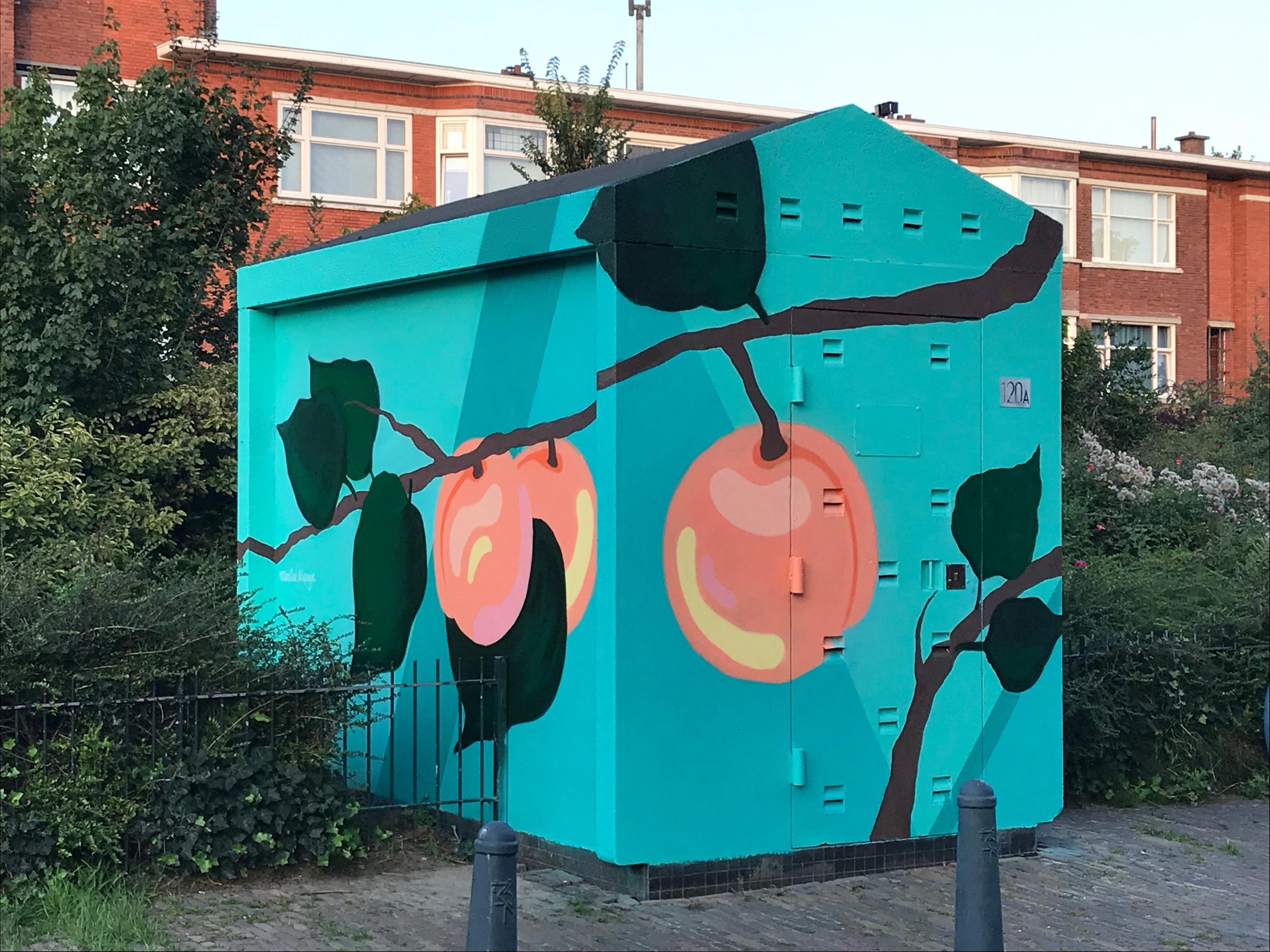 Abrikozenstraat, Den Haag 2019