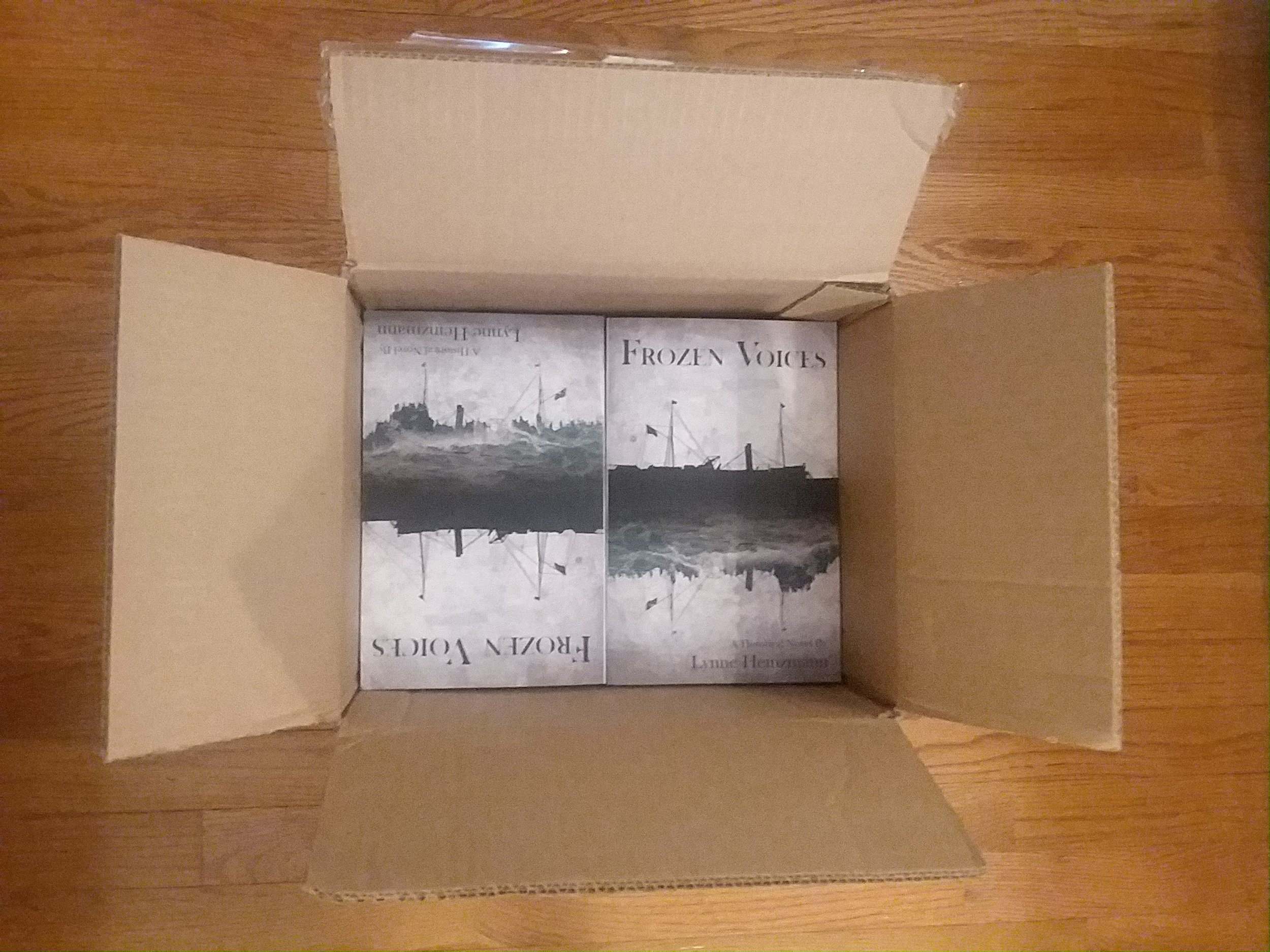 Box from New Rivers Press