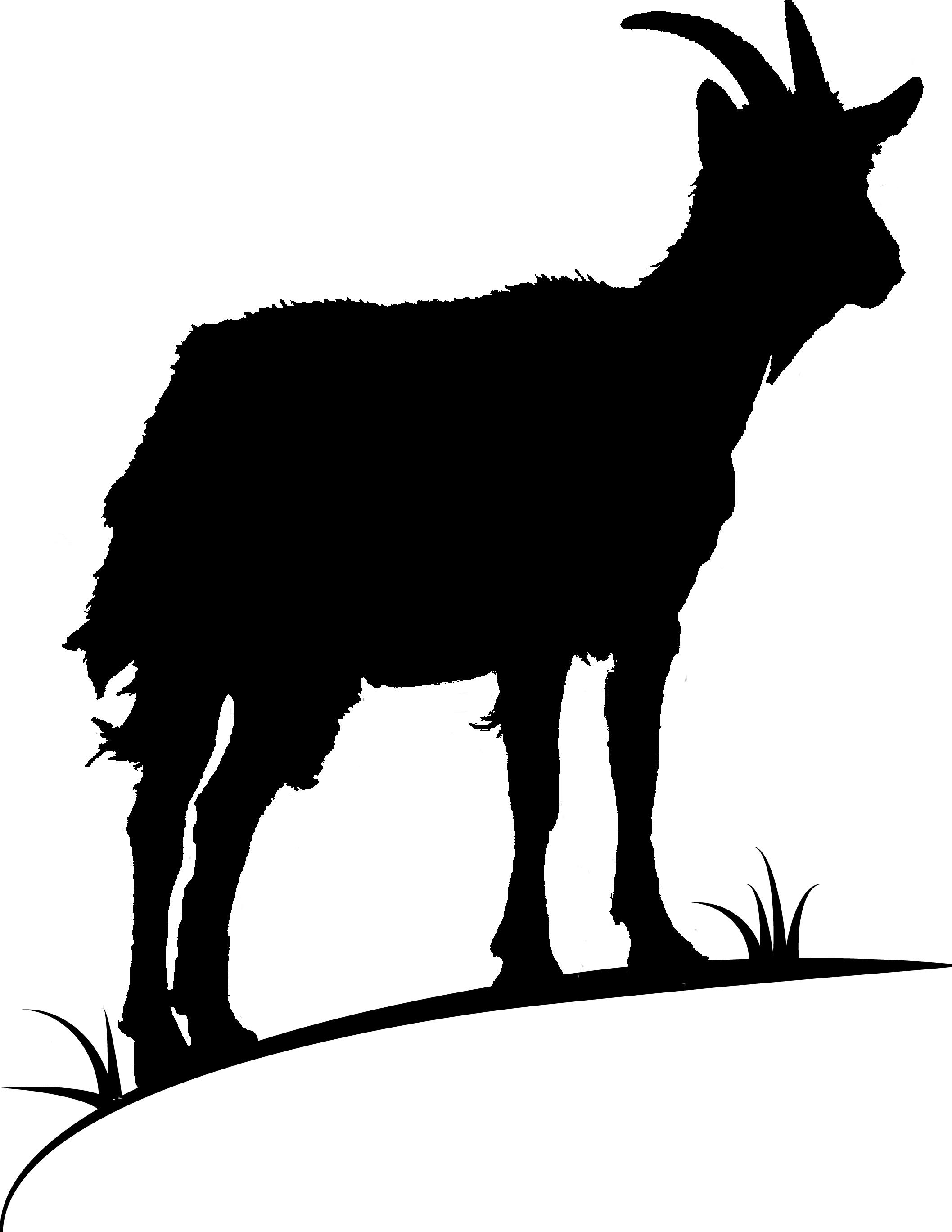 Goat Hill Writers' Logo  Courtesy of HesterKaplan.com