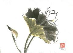 LotusIII.jpg