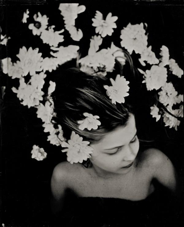 Deborah Parkin -Chrysanthemum hair .jpg