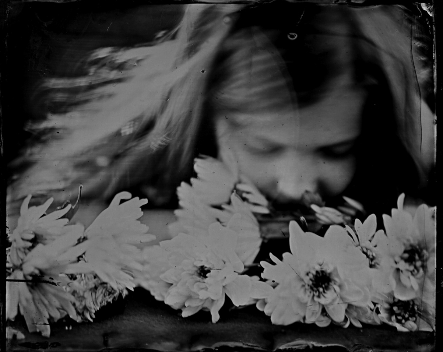 Deborah Parkin - chrysanthemums.jpg