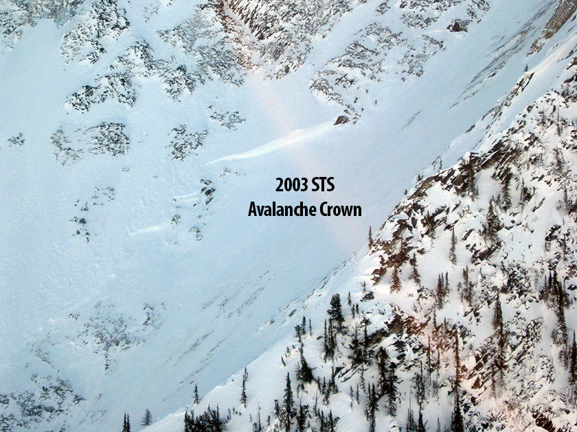 2003 STS Avalanche Crown