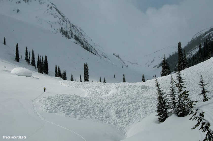 Frequent Flyer avalanche debris. Balu Pass Trail is buried to the right of skier