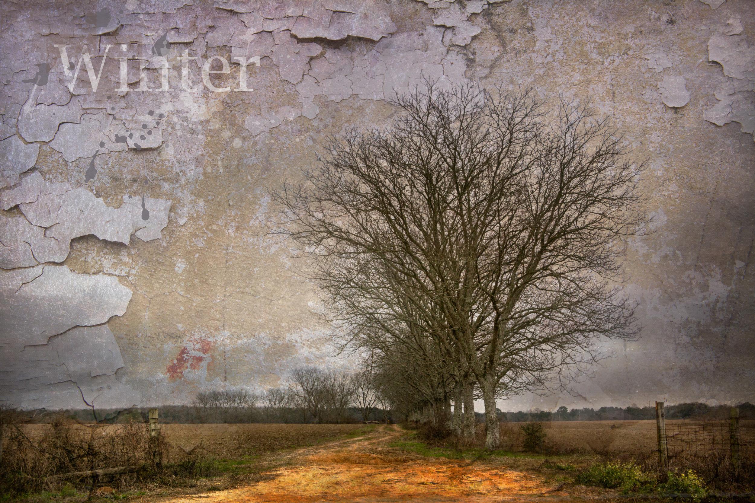 img_3557-wintersm.jpg
