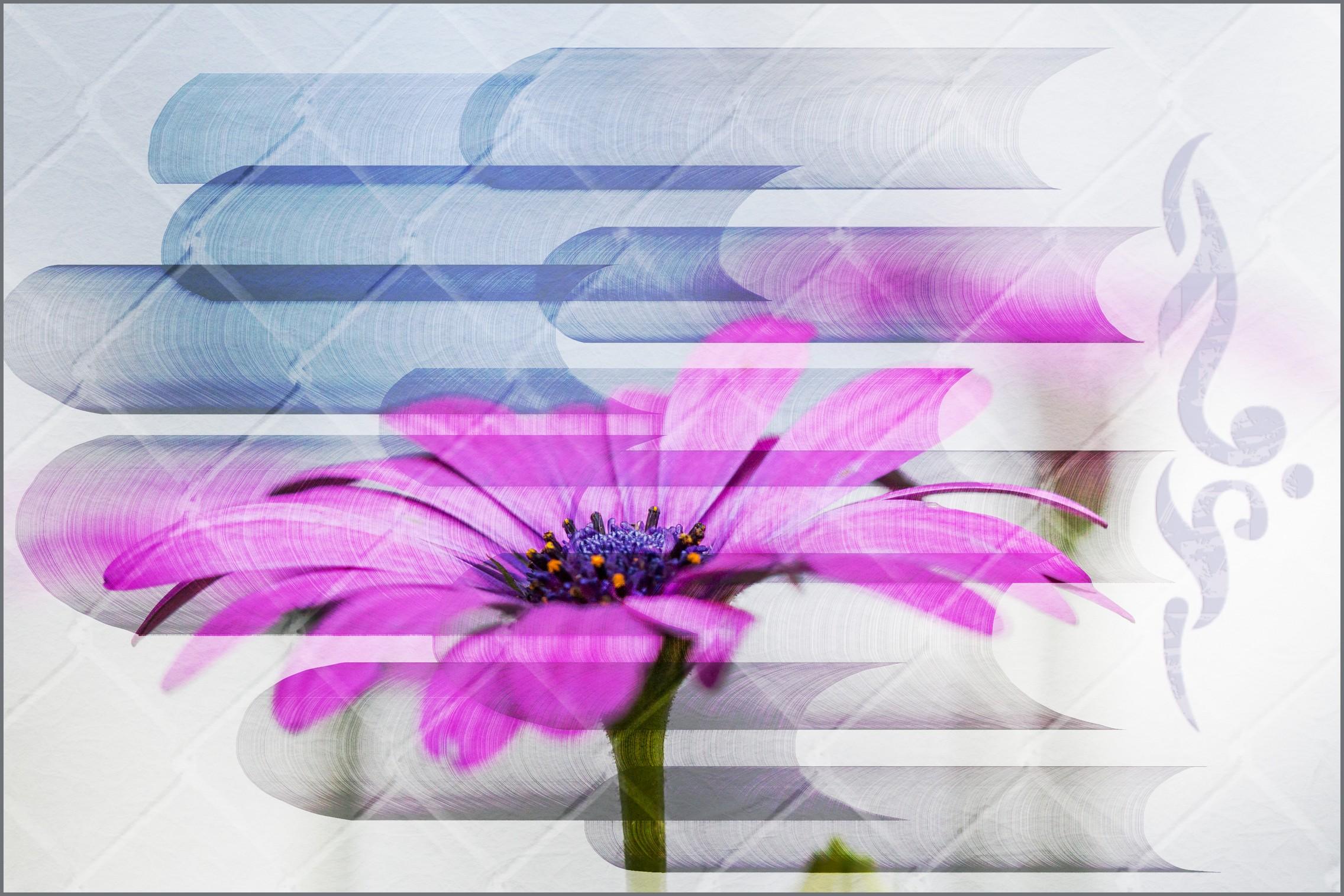 img_4990-fxsm.jpg