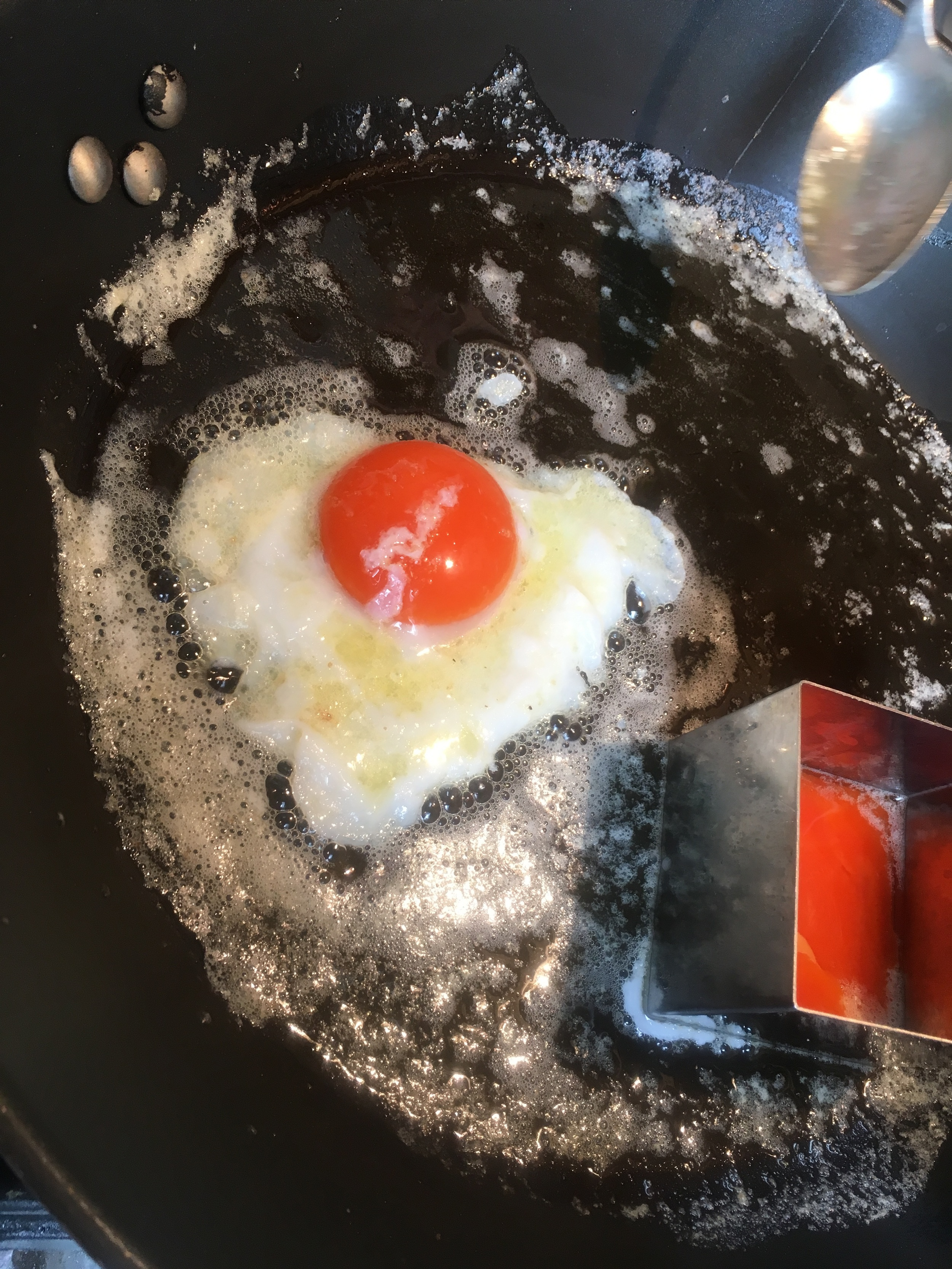 Egg.jpeg