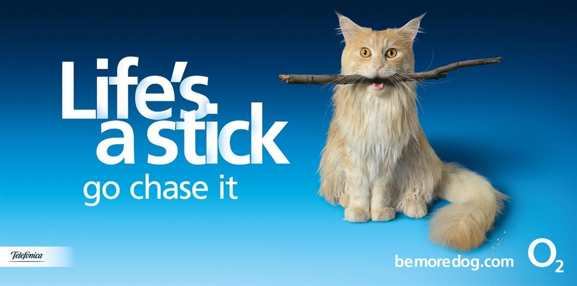 BMD-Stick-Life.jpg