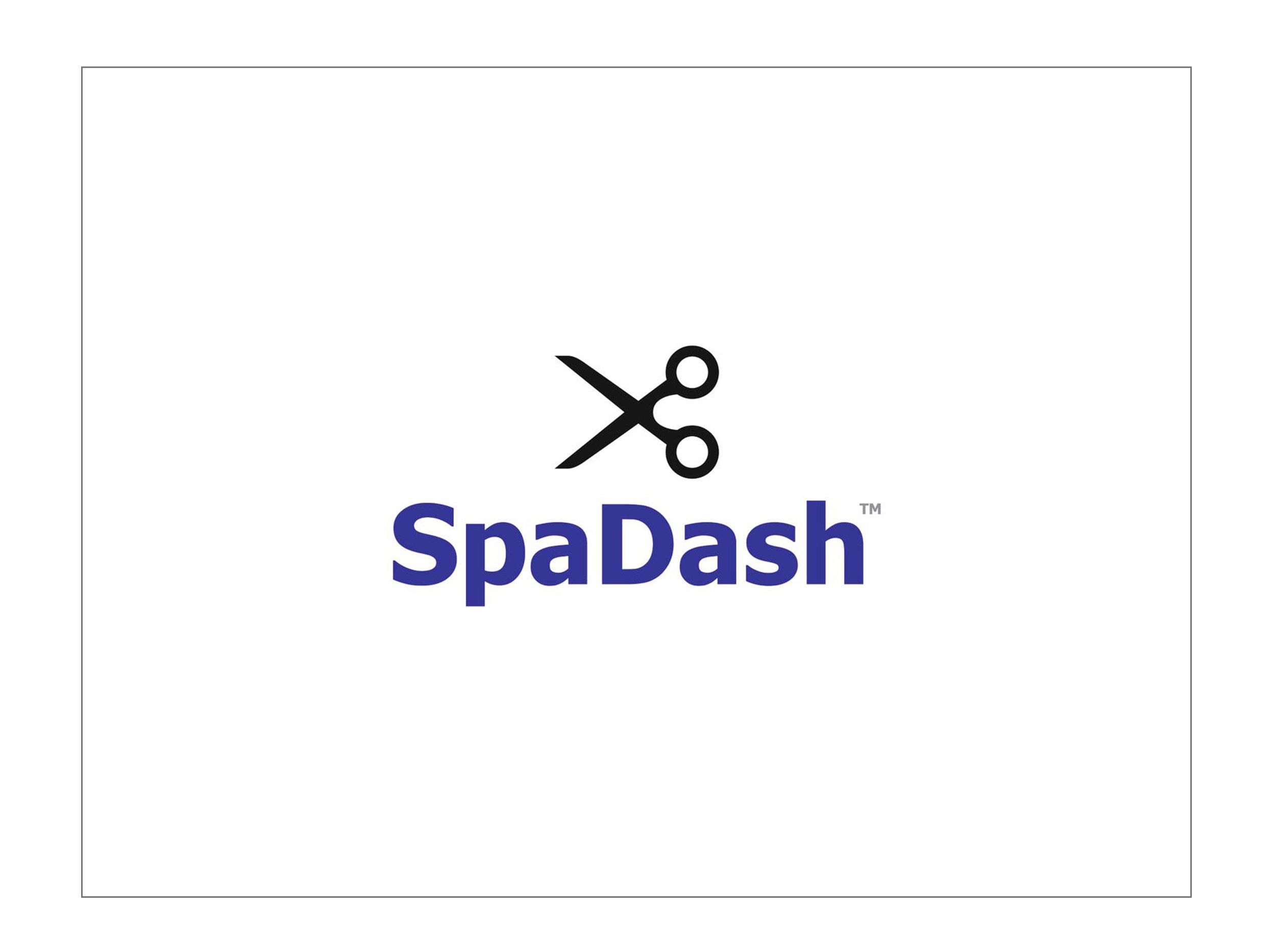 spa_dash.jpg