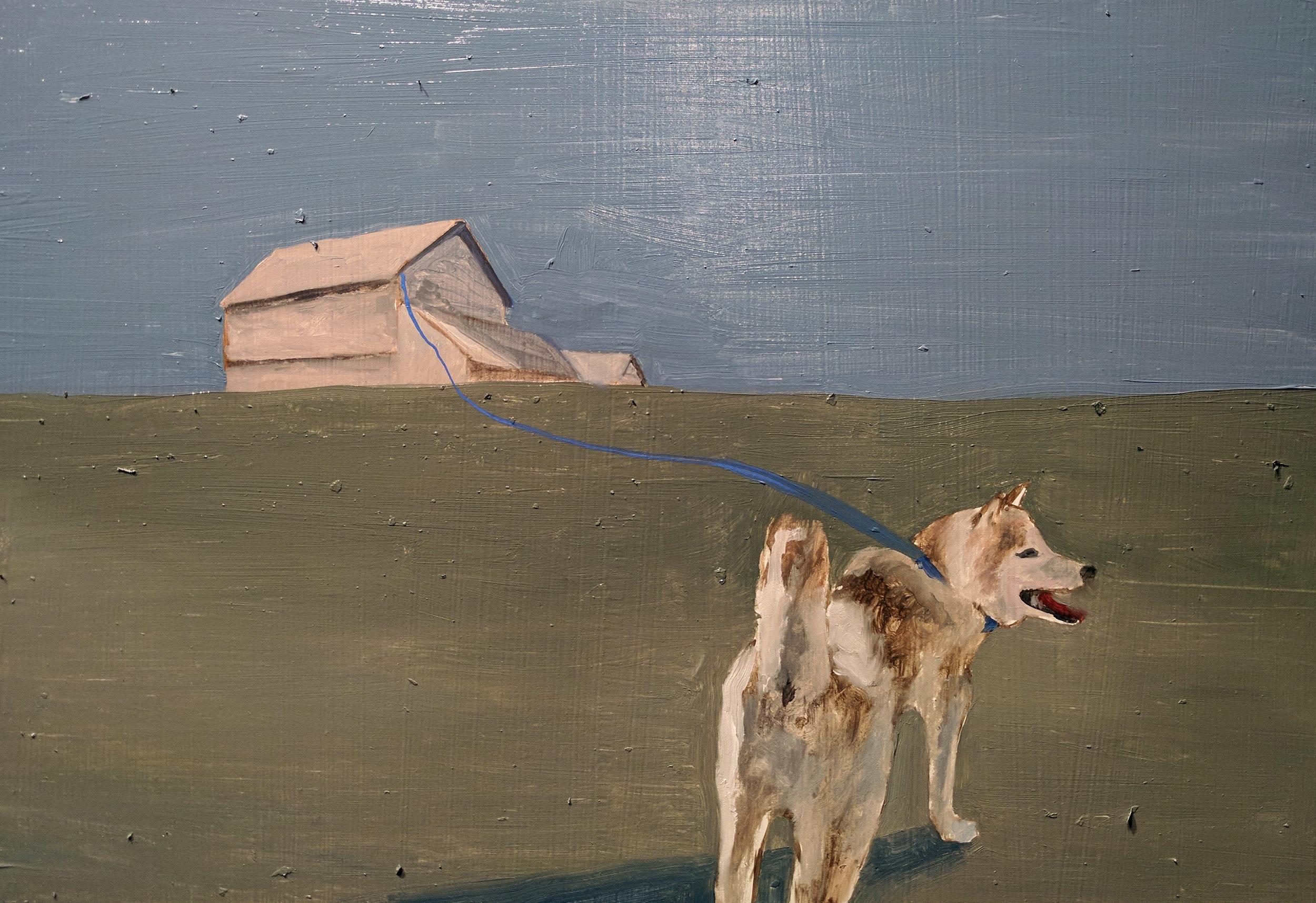 5 - Dog Run.jpg