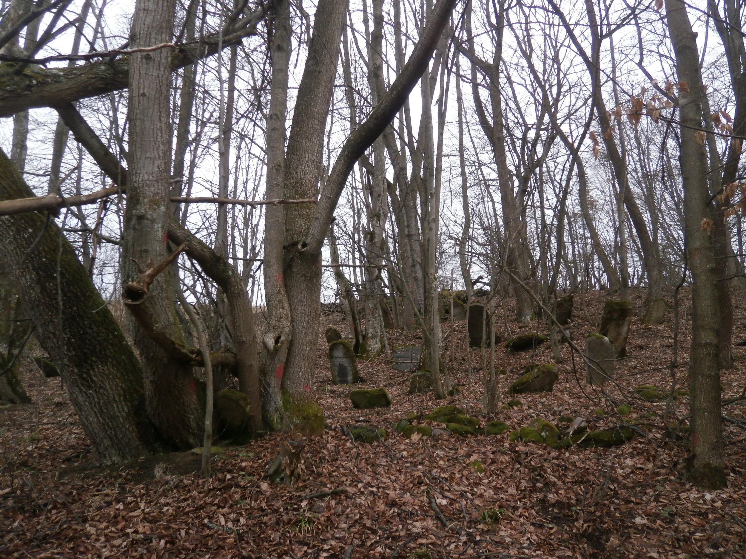 Topola cemetery before 1.JPG