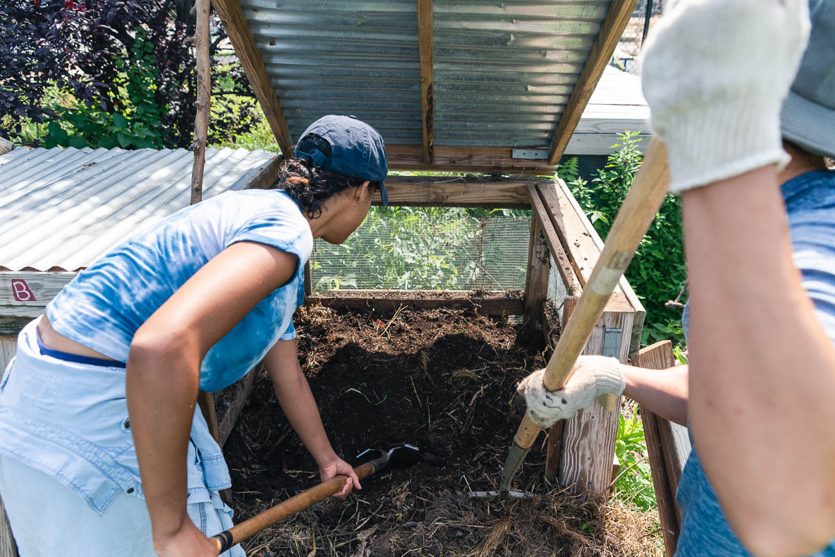 Common-Good-City-Farm-20190622-029-Web-Res.jpg