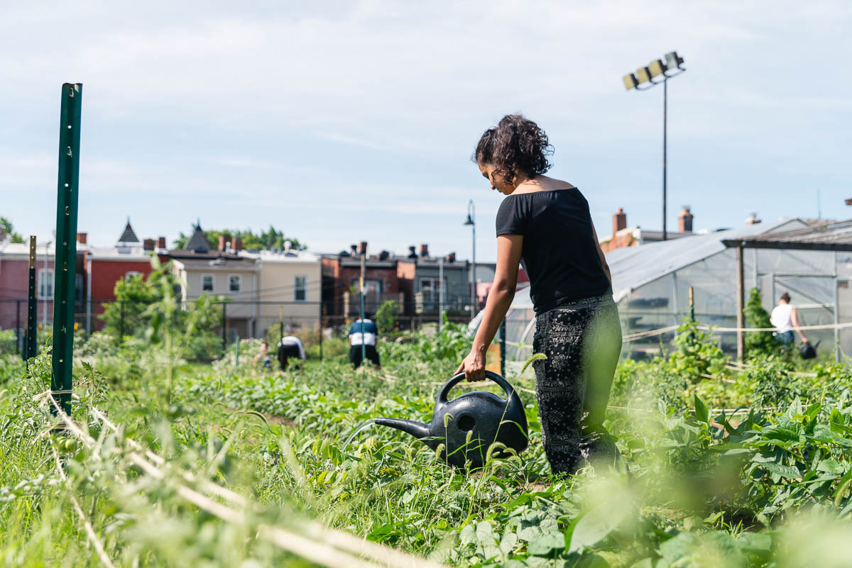 Common-Good-City-Farm-20190622-072-Web-Res.jpg