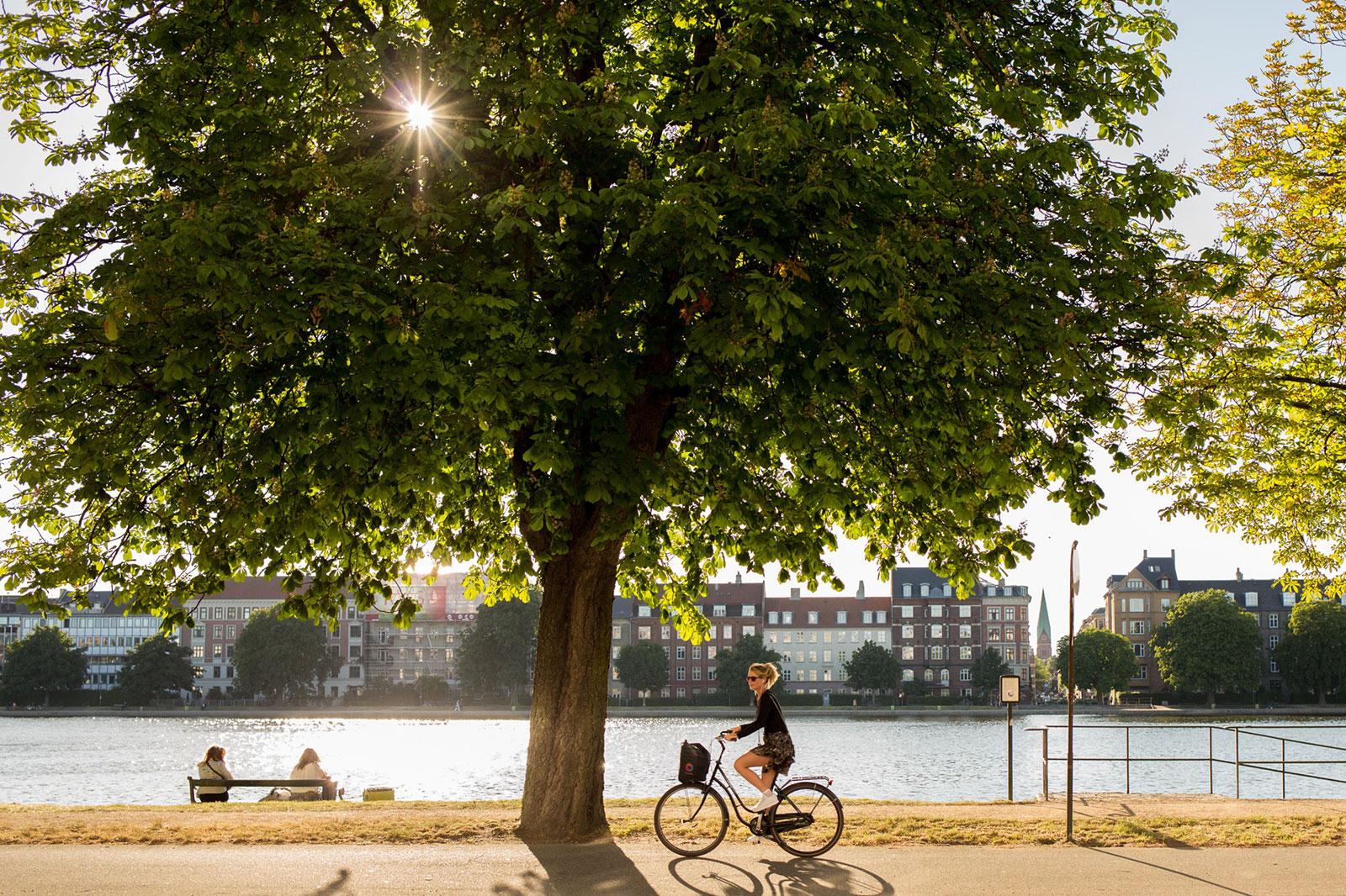 Girl on Bike - Copenhagen