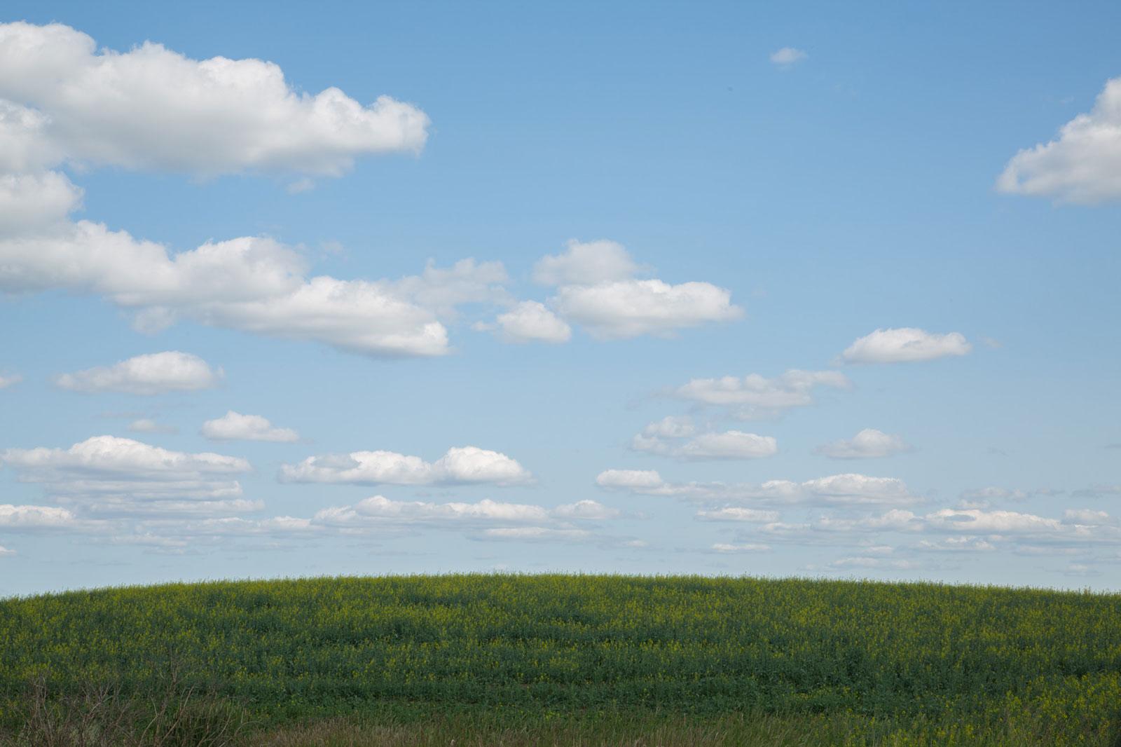 Stony Plain Alberta
