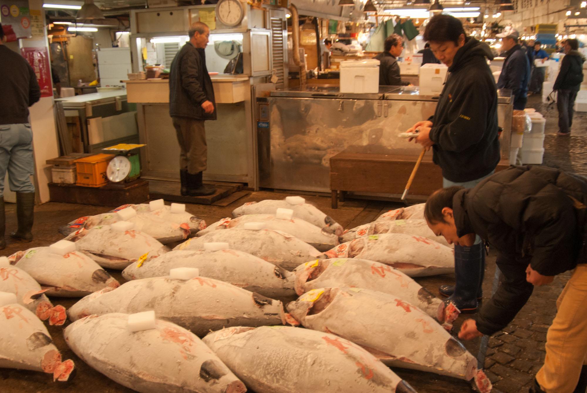 Tsukiji-Tokyo-ckstenberg-5316.jpg