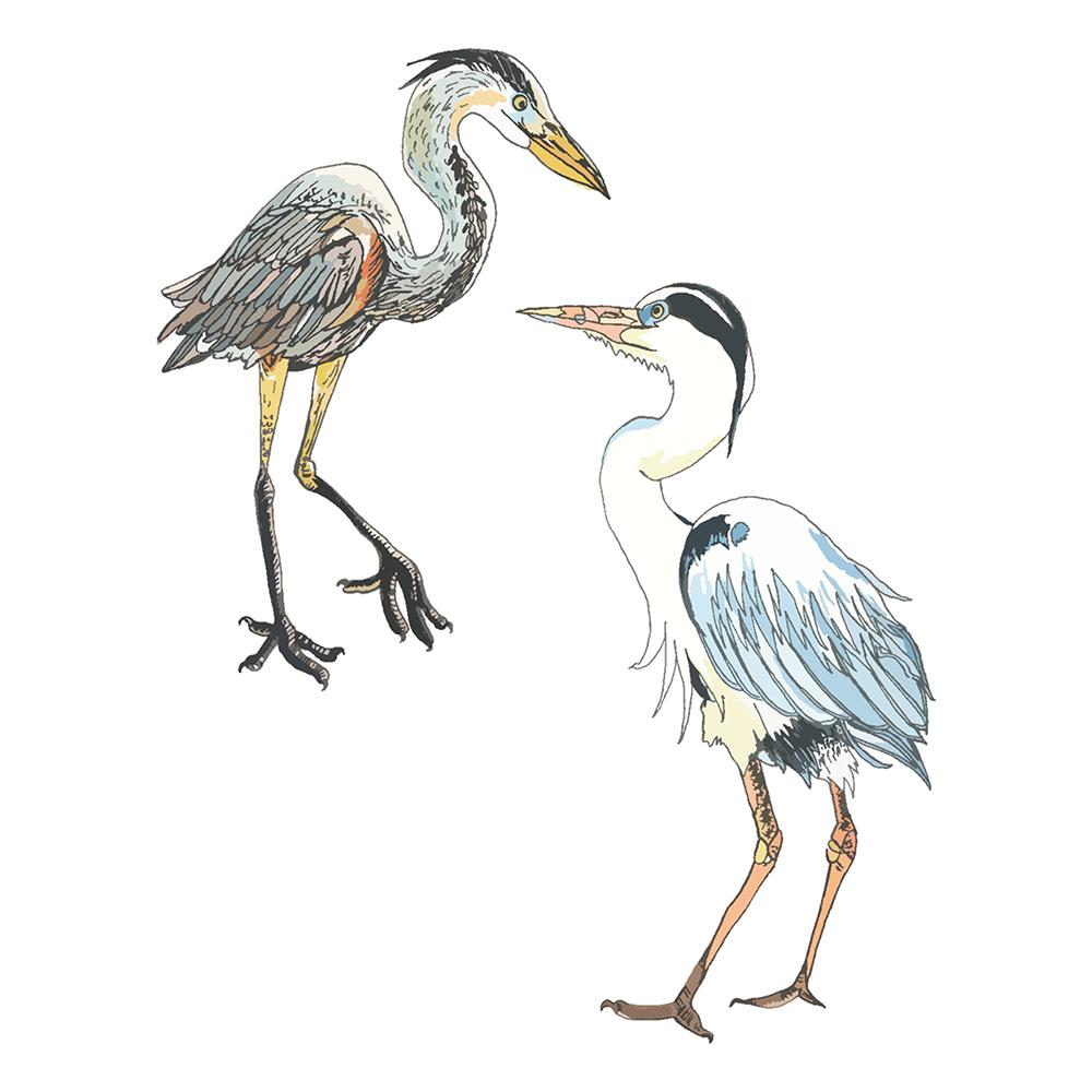 herons 1000.png