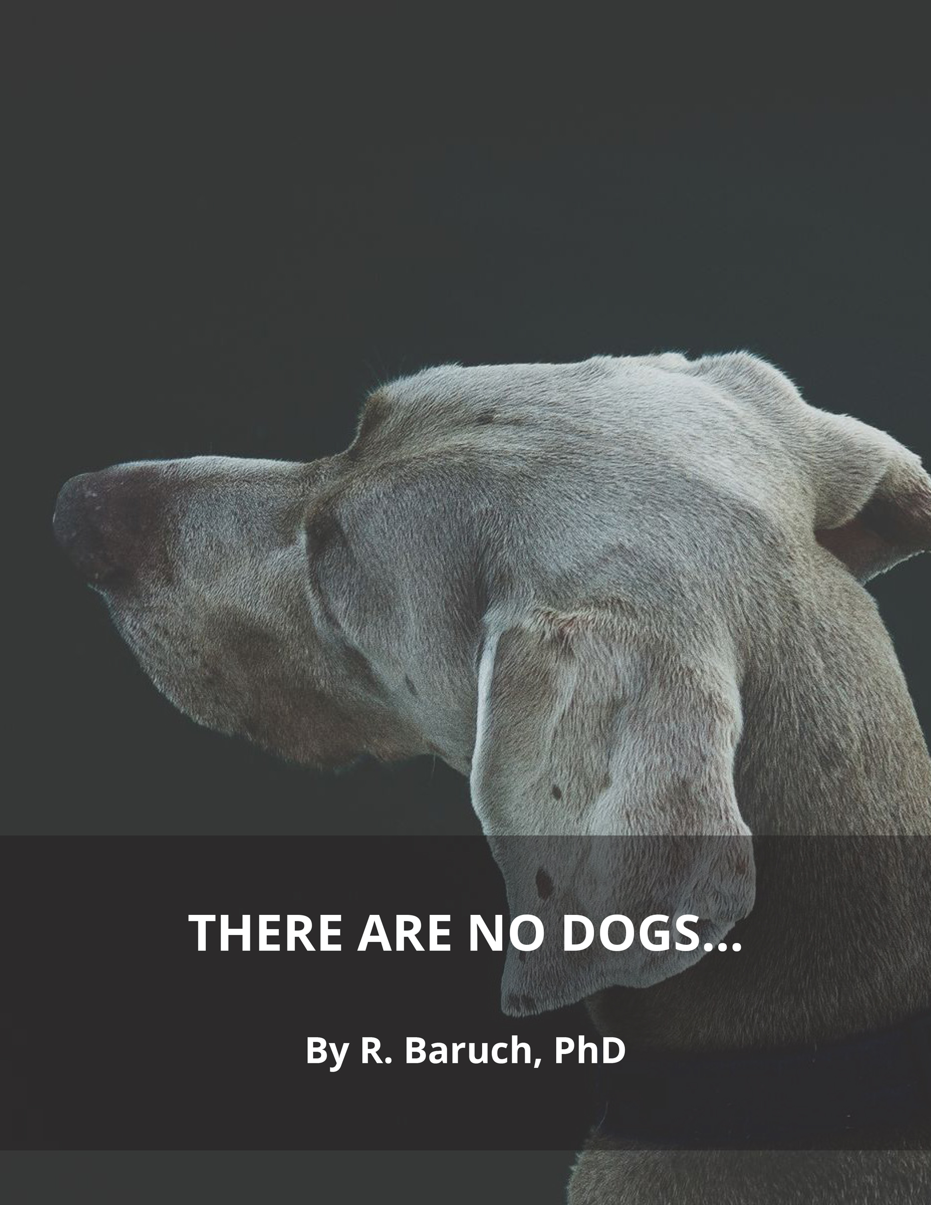 There Are No Dogs