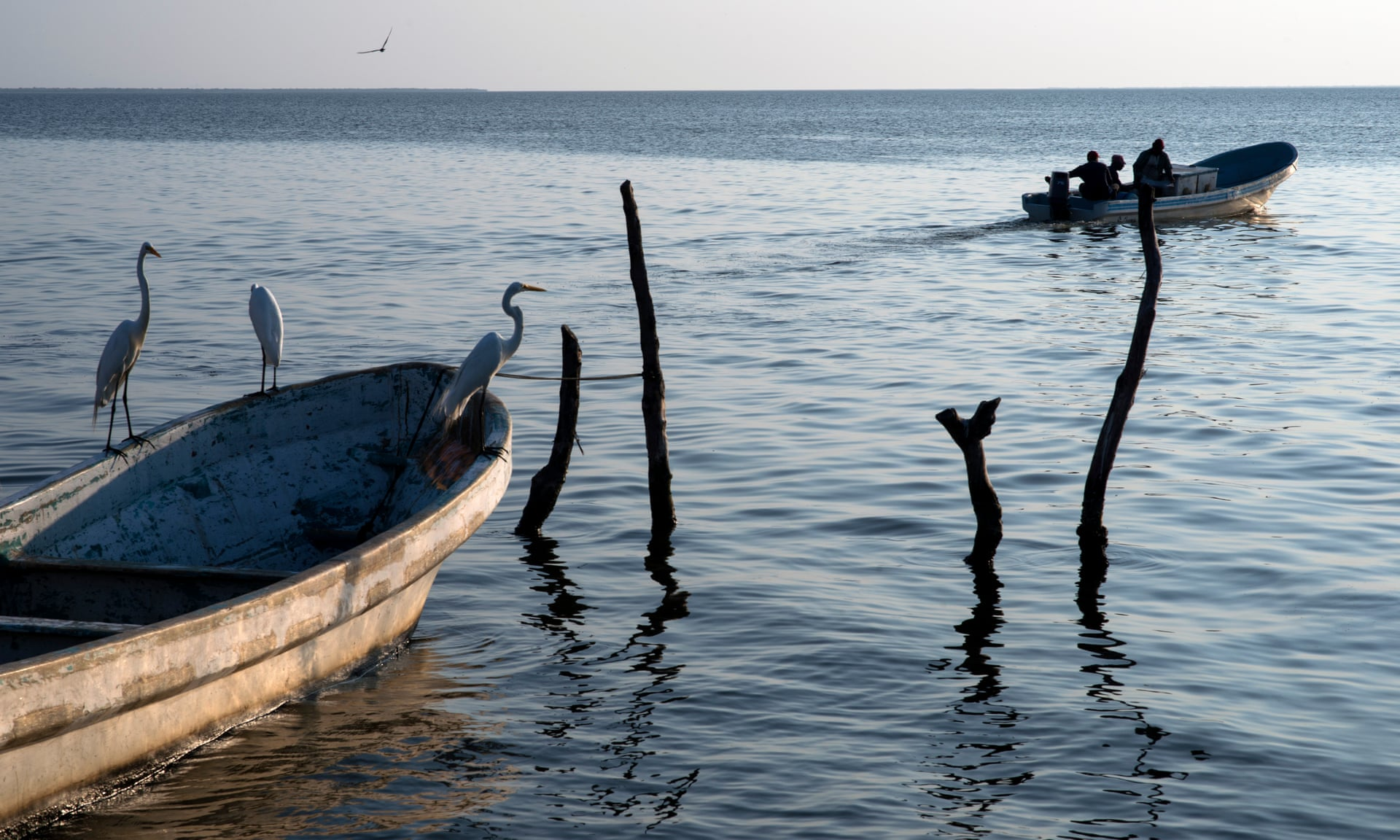 Fishermen in Paredón say the village is used by smugglers to transport migrants by sea. The boats come from Central America and stop here to refill petrol tanks. Photograph: Encarni Pindado for The Guardian