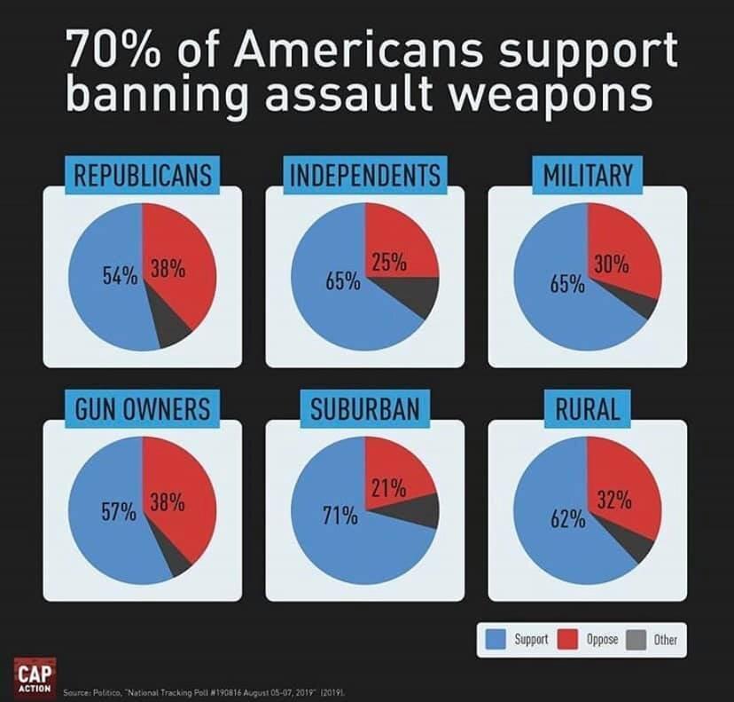 assault weapons.jpg