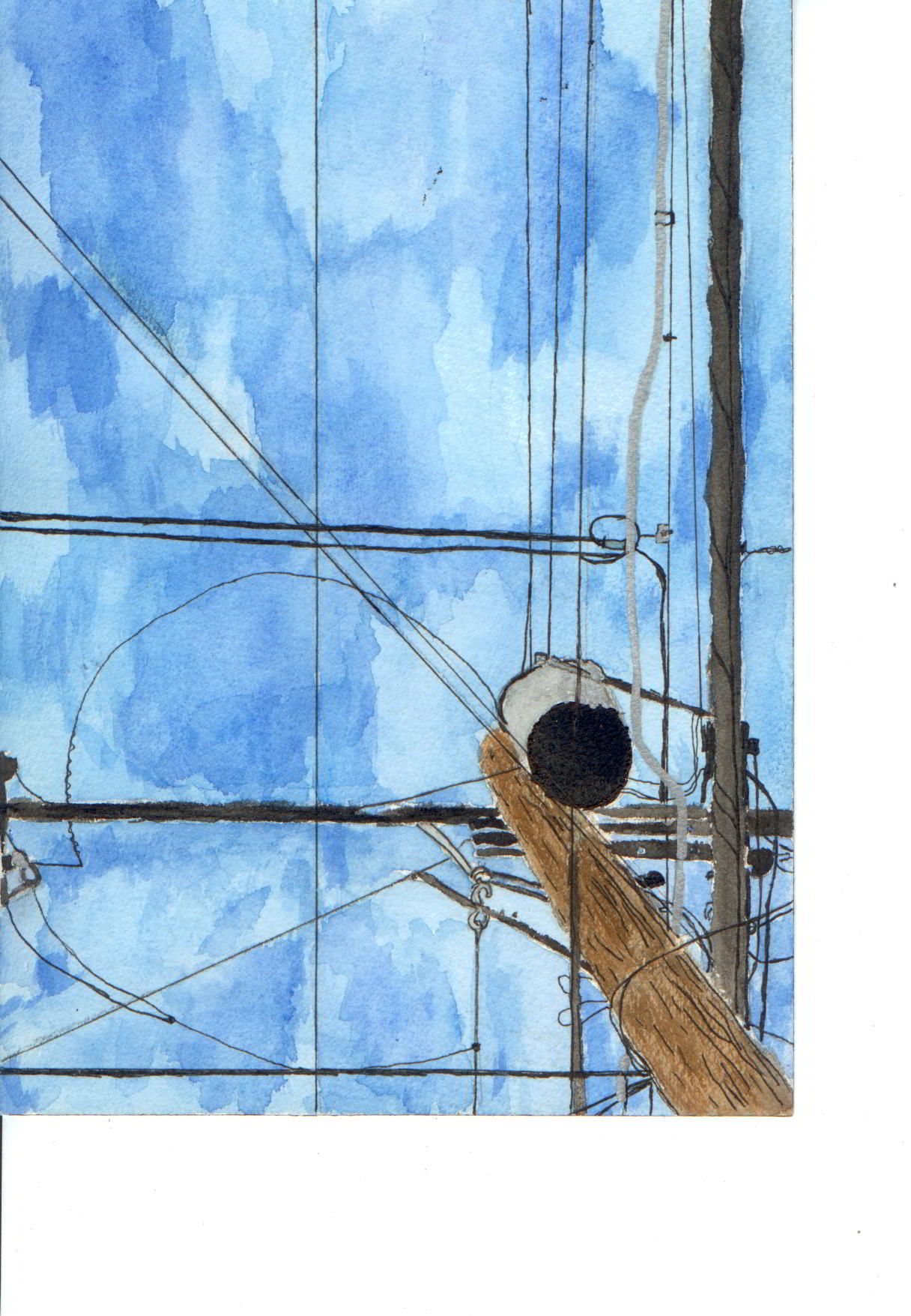 A Study in Electricity- © Elizabeth Dugdale