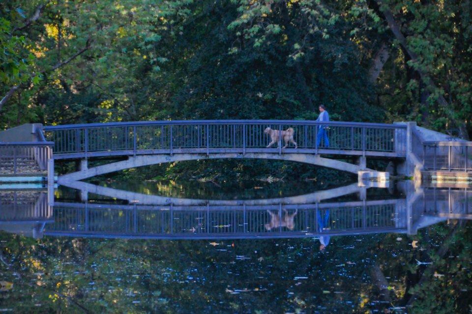 One mile bridge, Bidwell Park.              Photo: Thomas Barrett