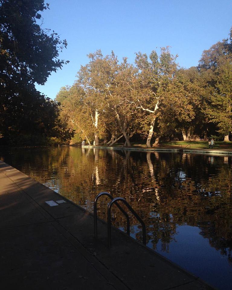 Chico's Sycamore Pool. Photo credit: Danie Schwartz