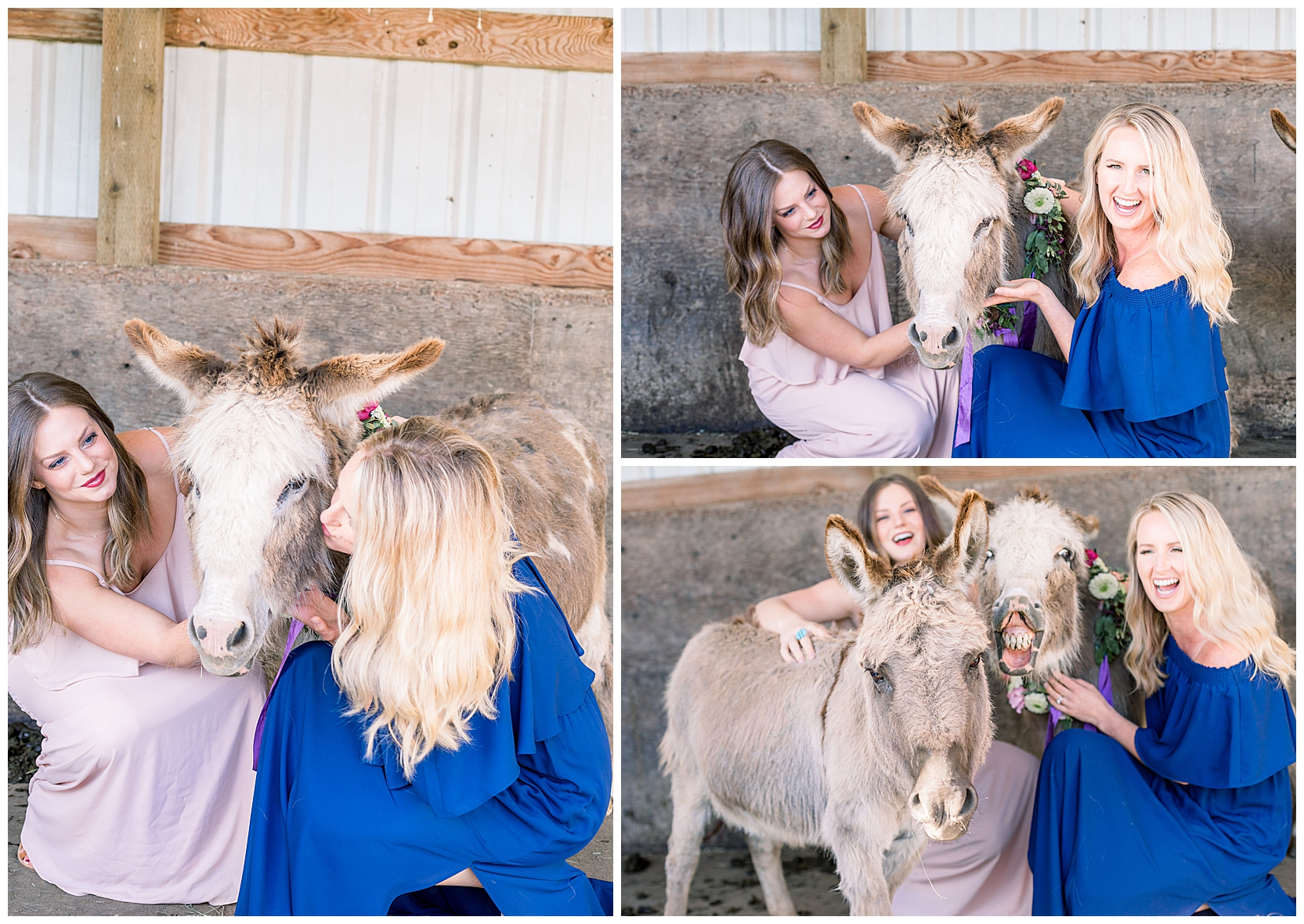 jessicafredericks_st petersburg_wedding_photographer_bridesmaid_farm_donkey_flower crown_inspo_0009.jpg