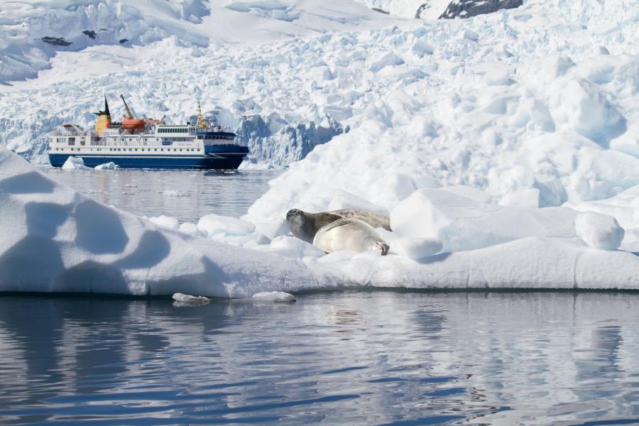 PHOTOS BY: Antarctica XXI