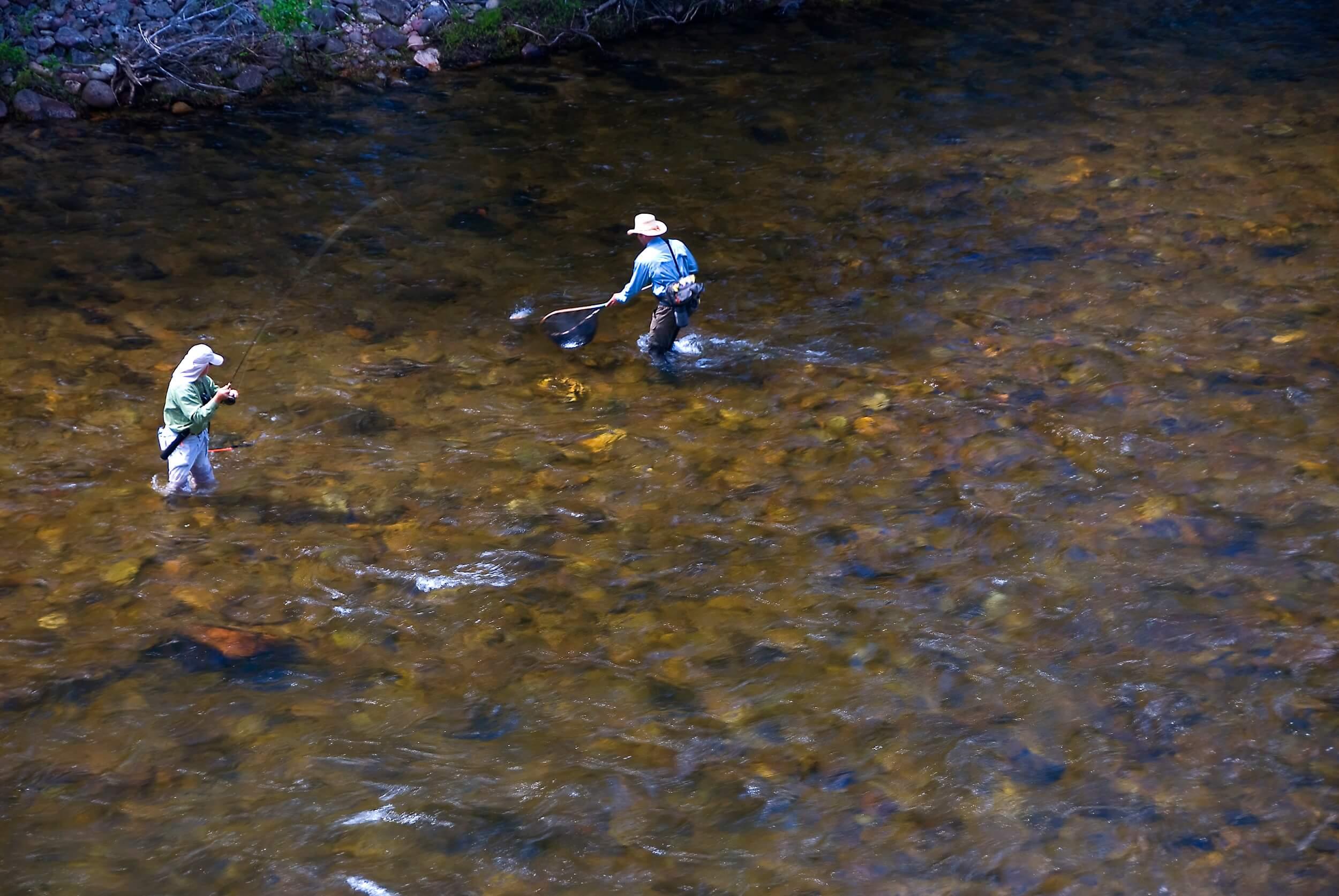 Fish Landing_1888.jpg