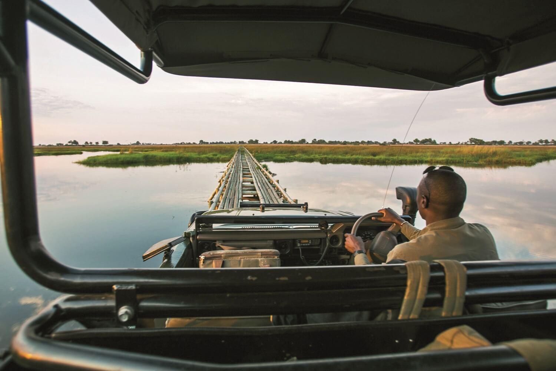 _Copyright_Beverly_Joubert_Duba_Safari_Botswana_3980 copy.jpg