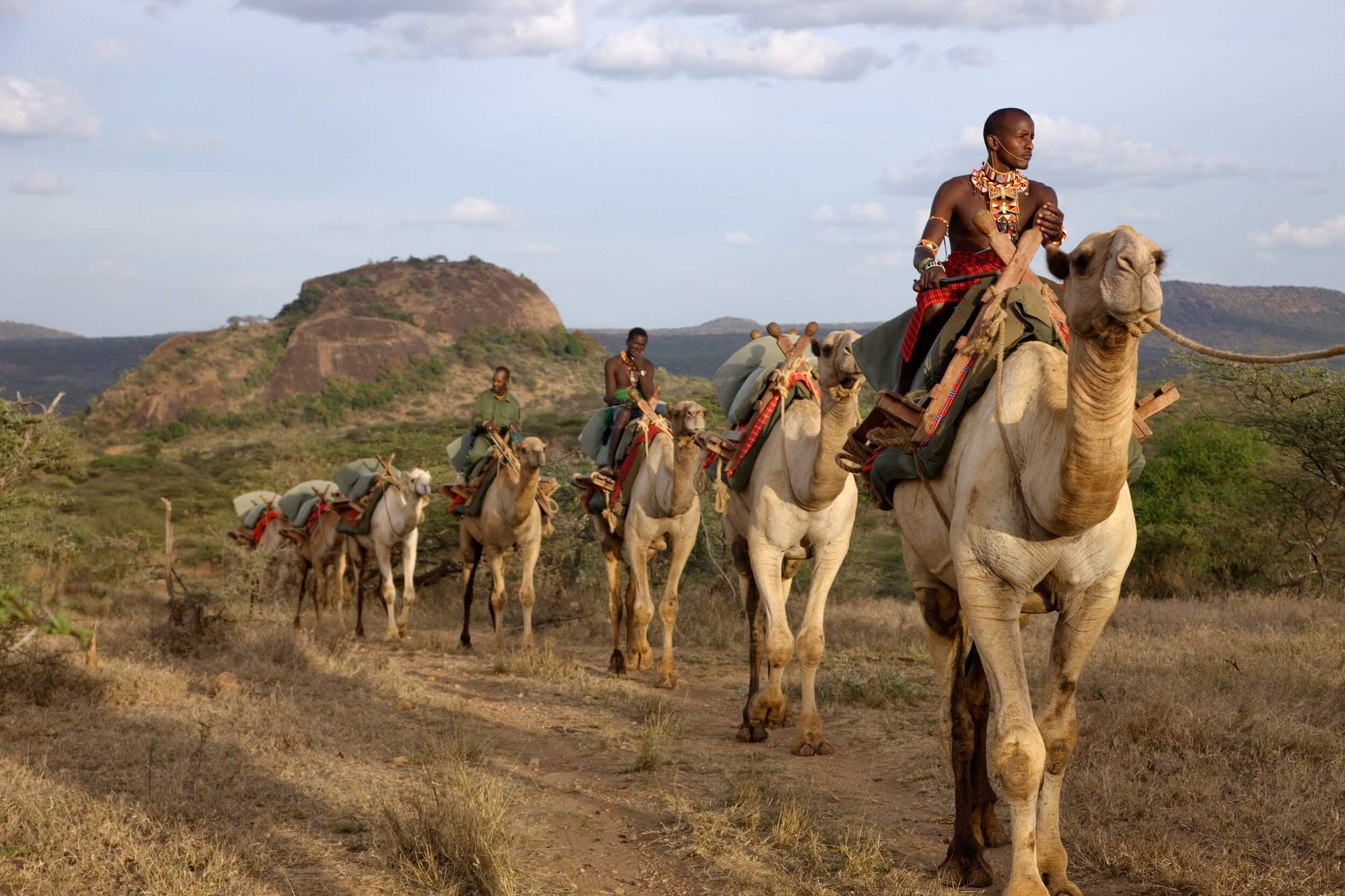 Ol Malo - Camels.jpg