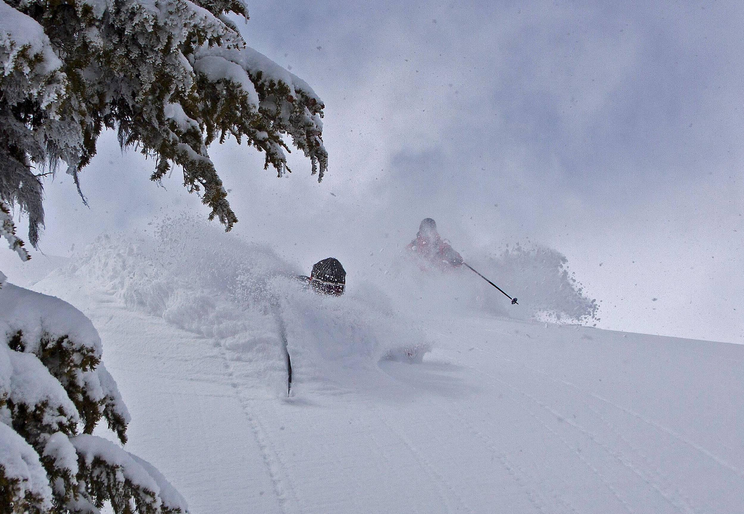 Cold Smoke. Bella Coola heli Sports, BC, Canada.jpg