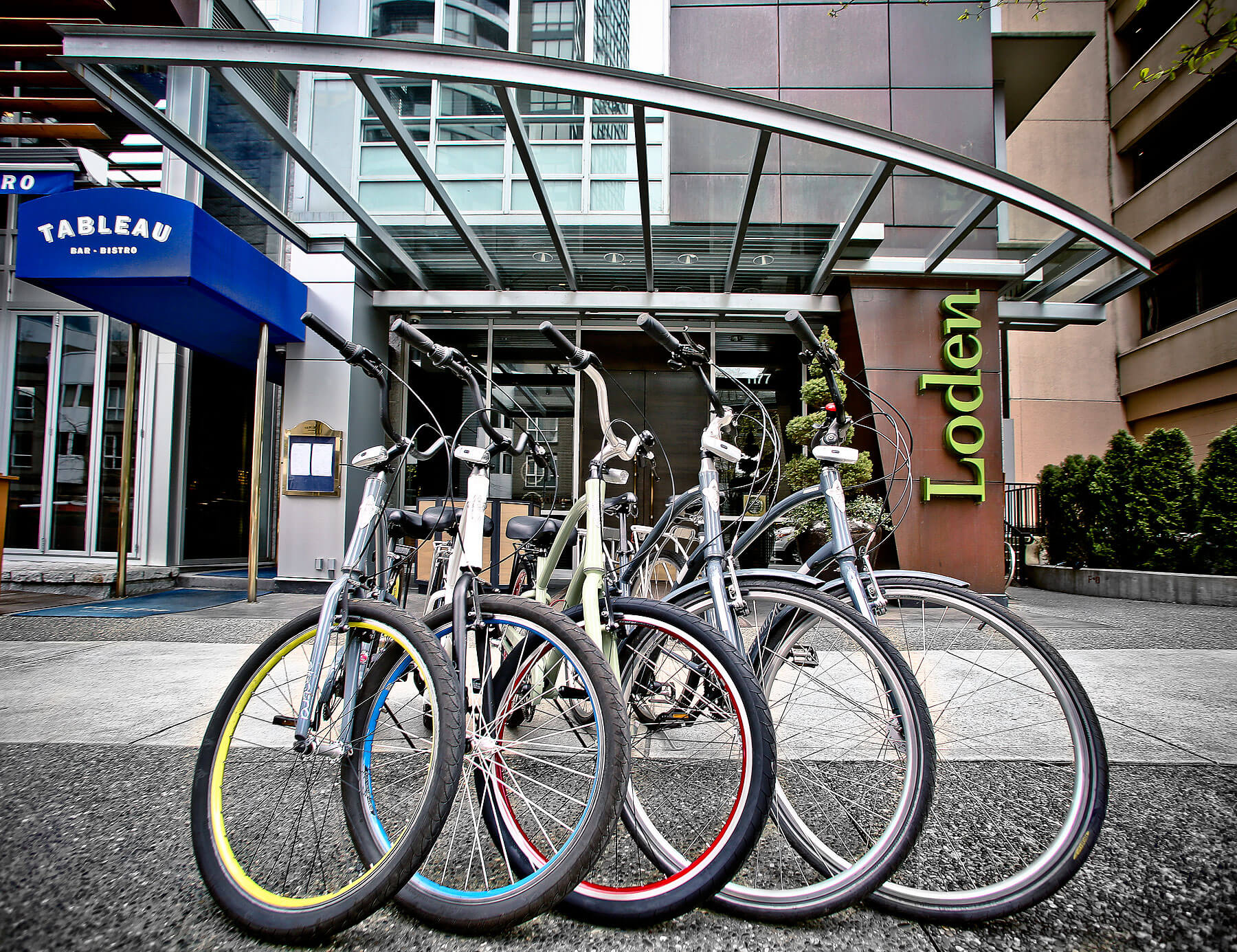 Loden-Cruiser-Bikes.jpg