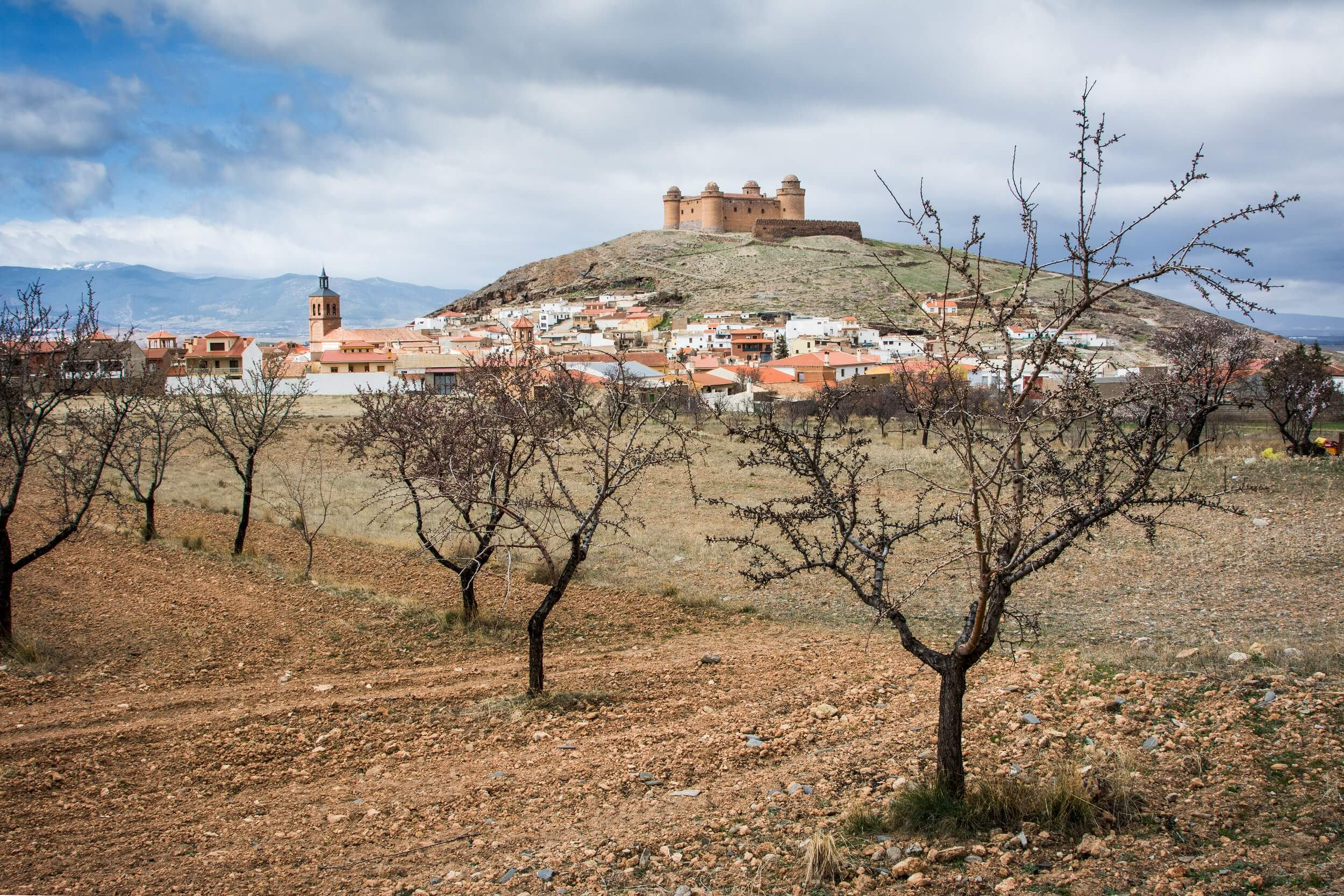 day 2-Spain2014_mid_resolution_273.jpg