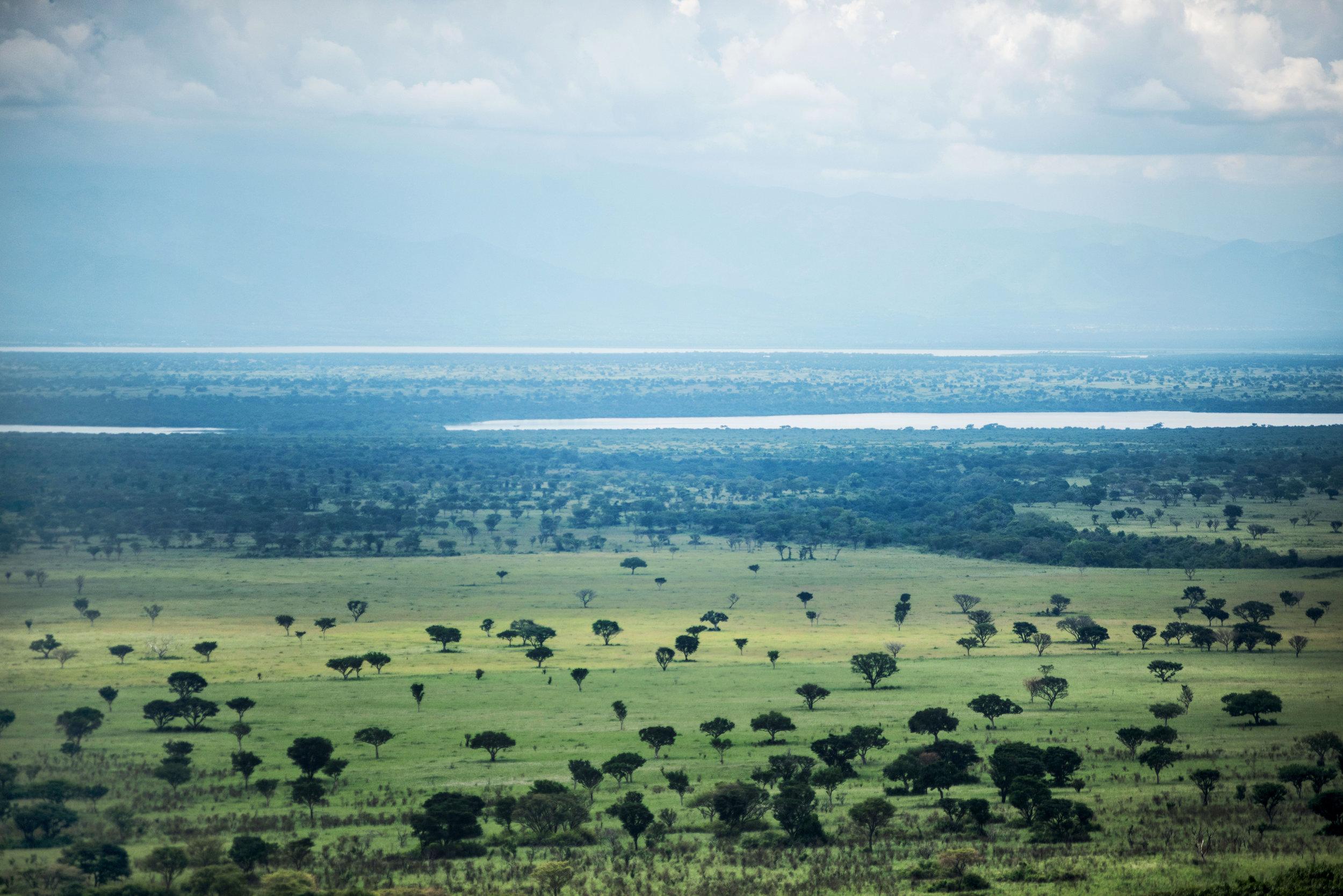 Kyambura_Queen+Elizabeth+National+Park.jpg