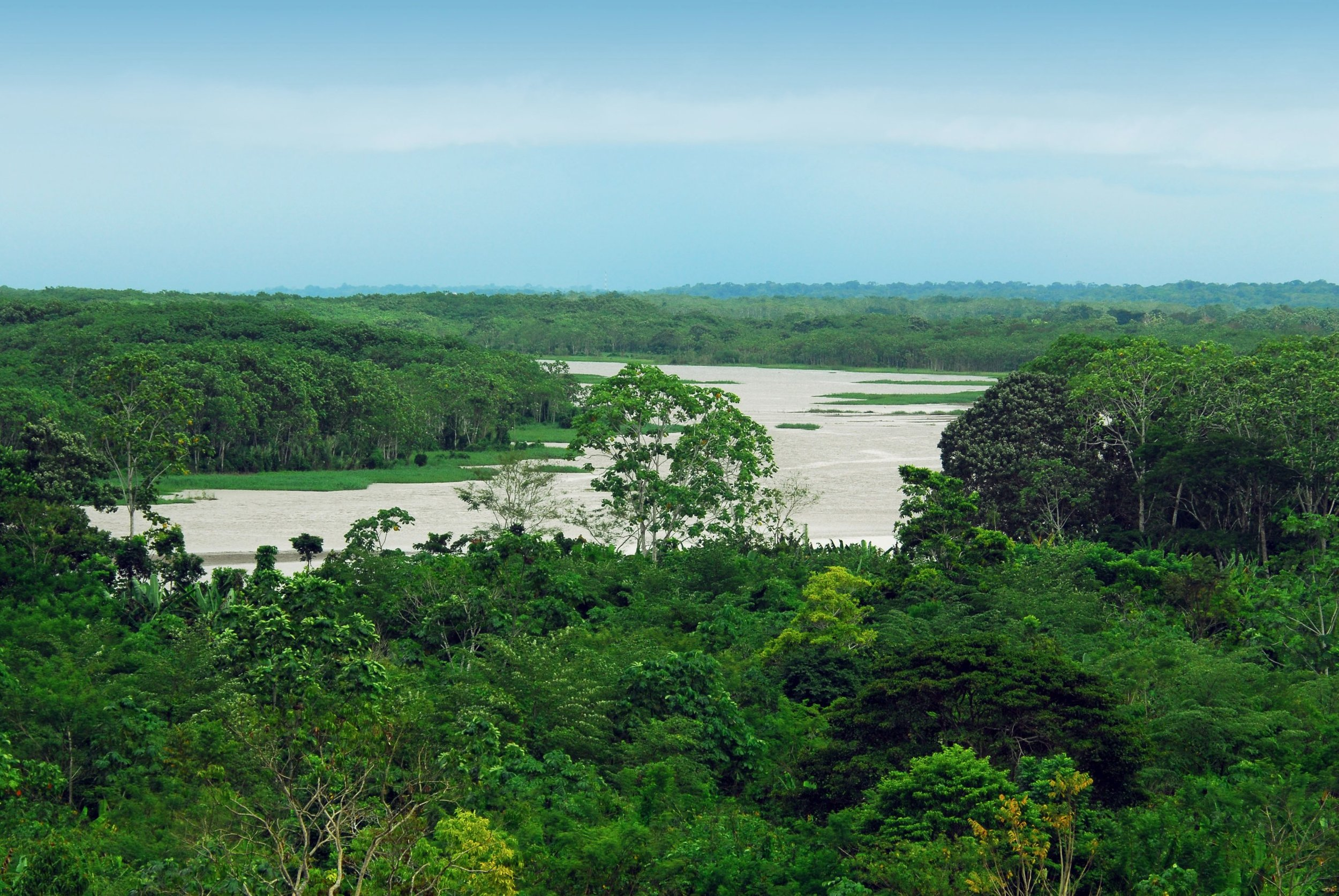 Amazon+River+Brown+water.jpg