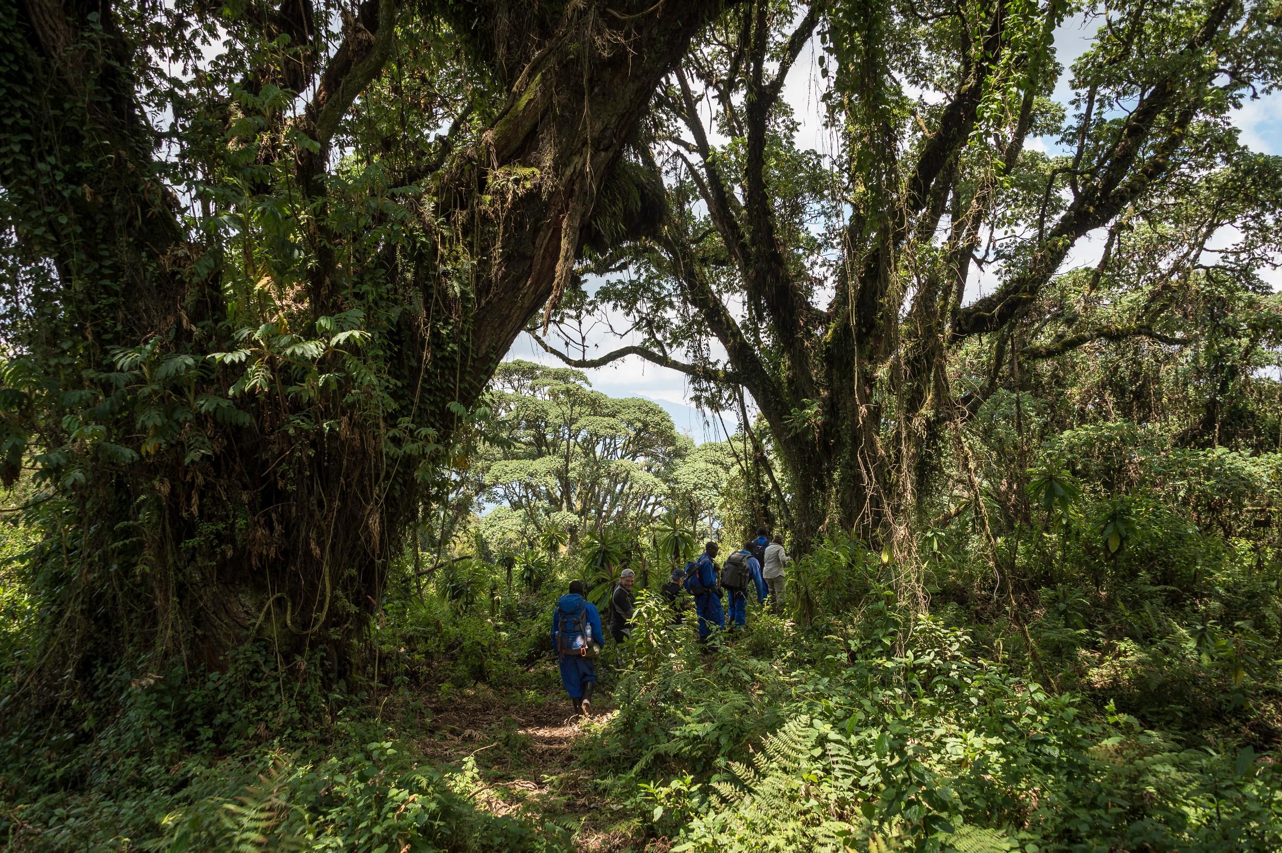 Rwanda-237.jpg