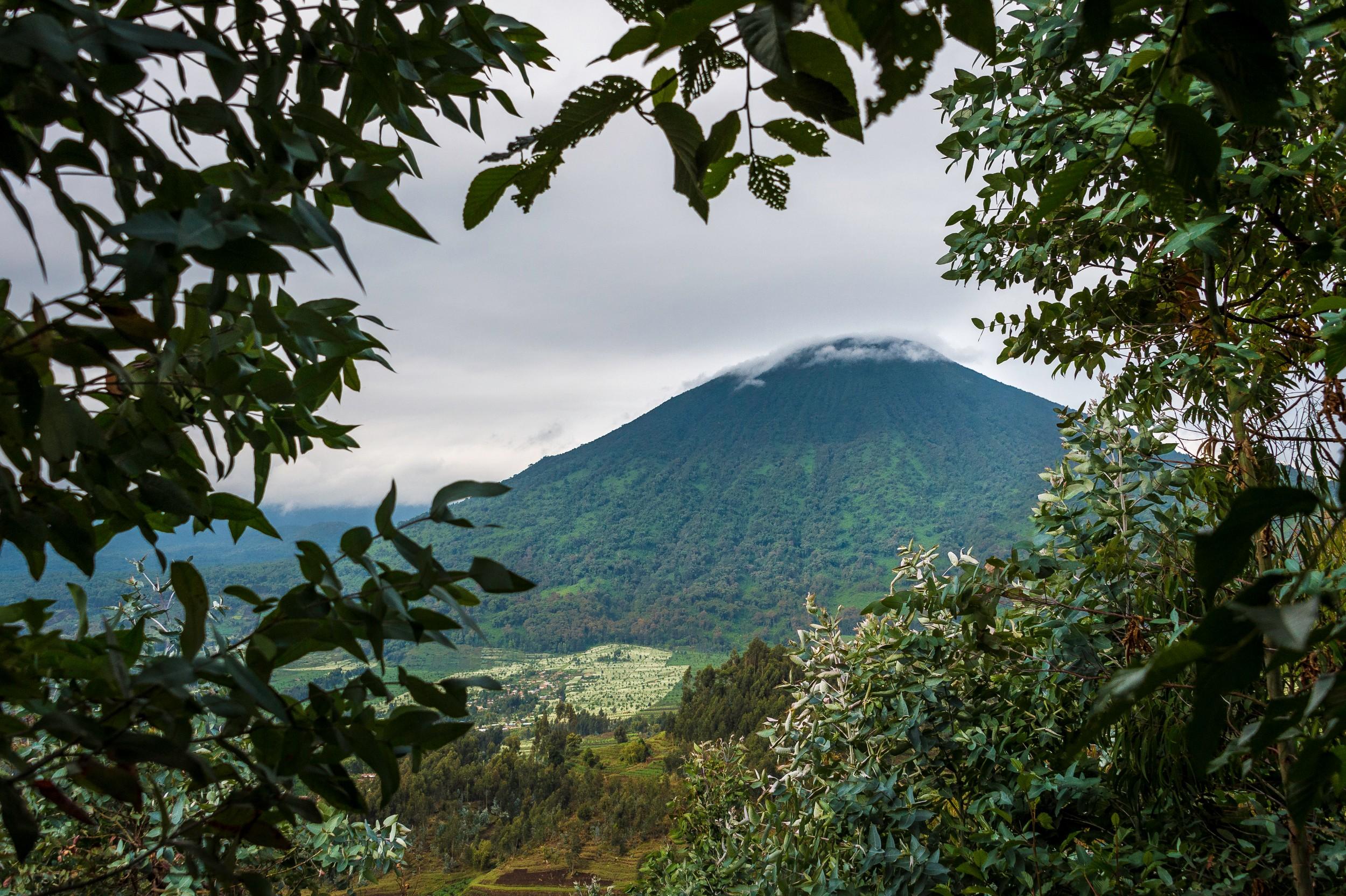 Rwanda-373.jpg
