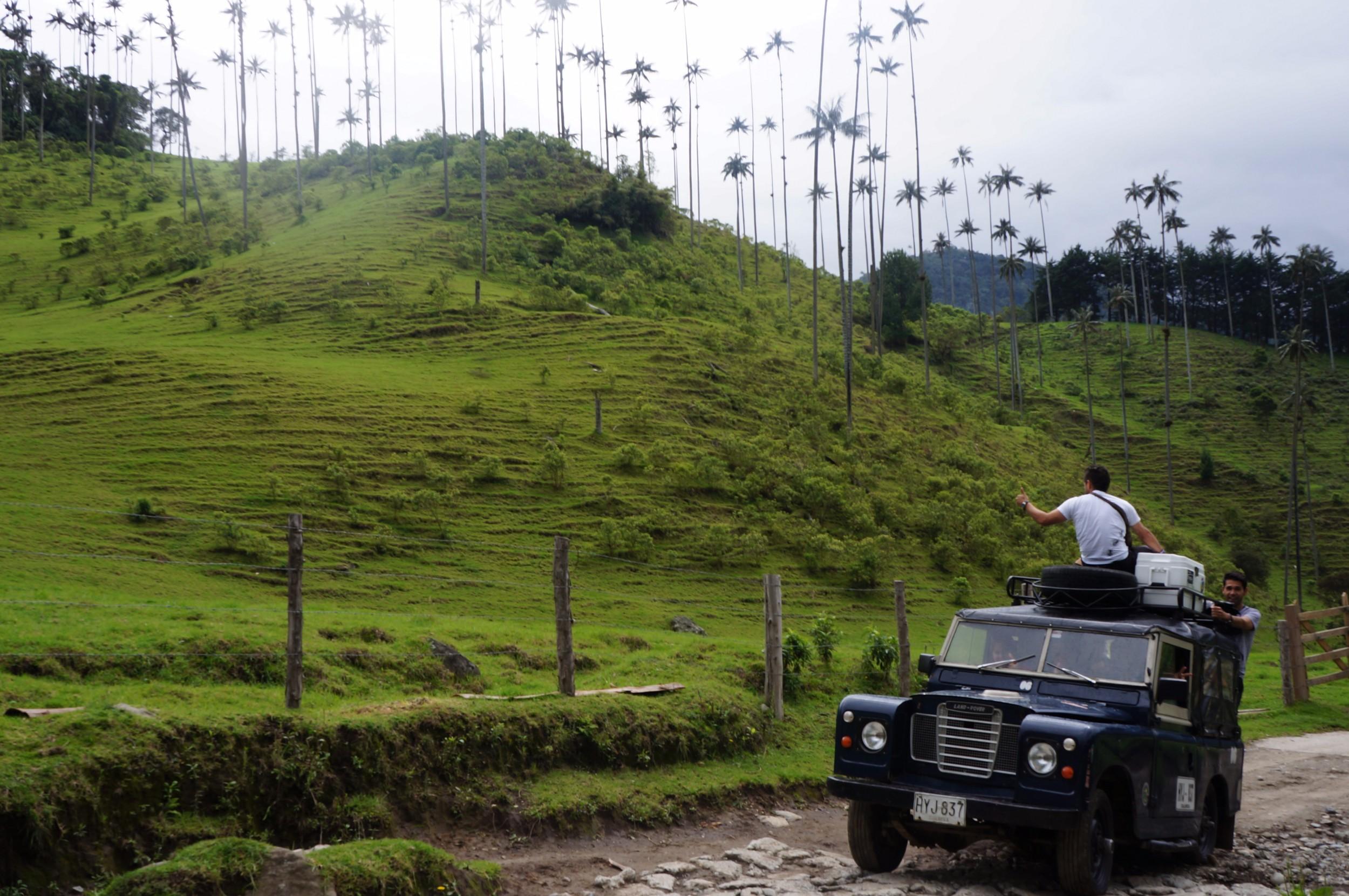 Excursions - Valle Cocora (2).jpg