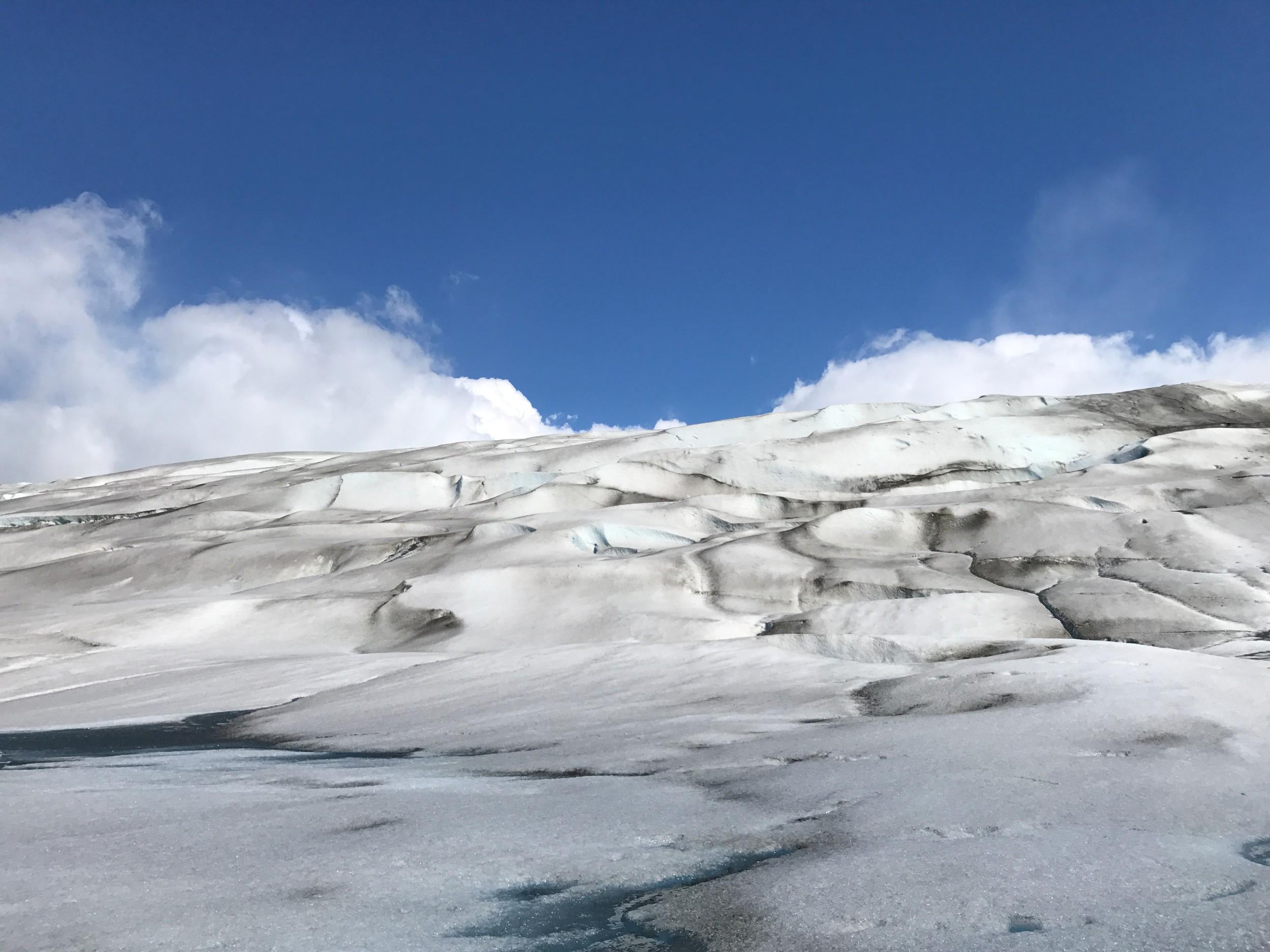 Grey_Glacier.jpg
