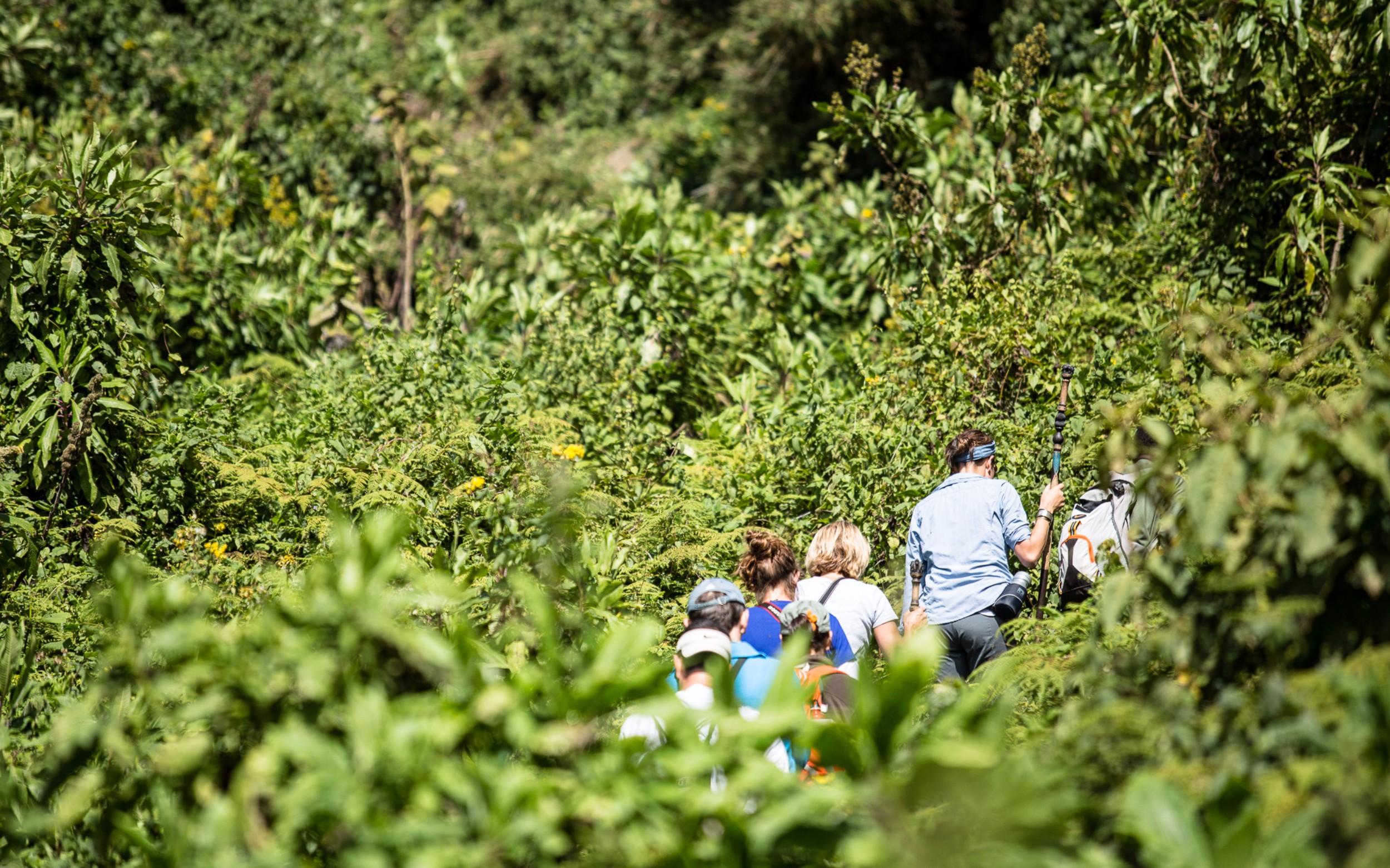 PNV trekking.jpg